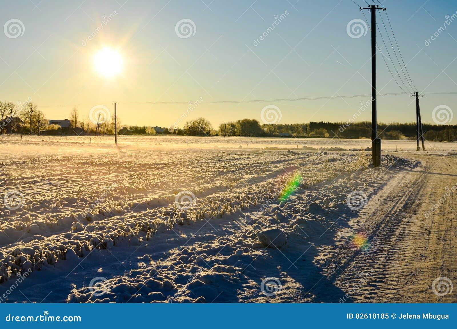 Día soleado en un campo nevoso en Estonia