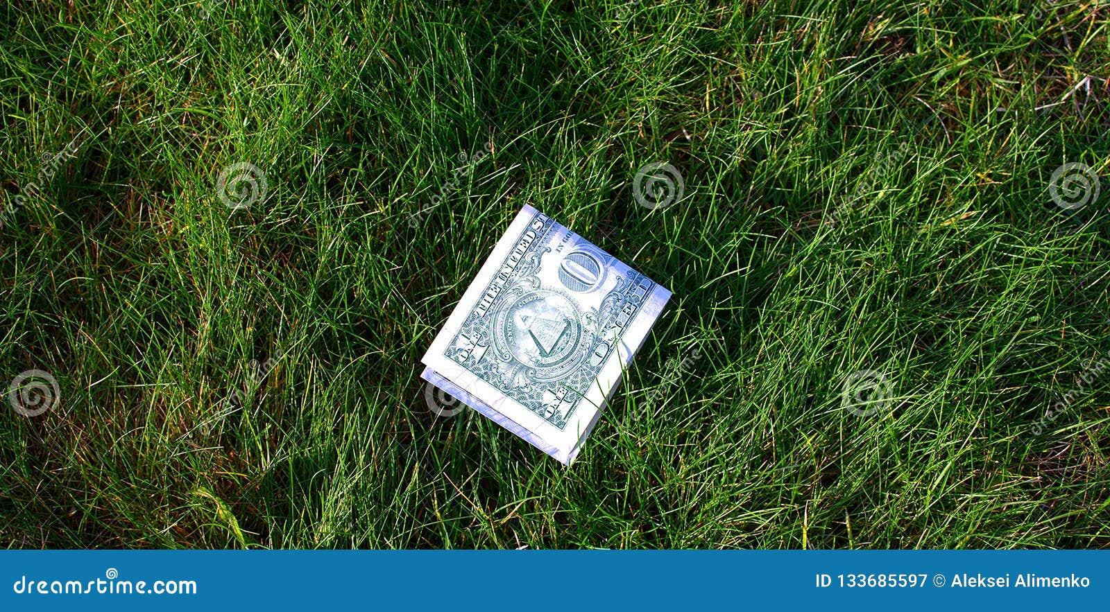 Dólar verde dobrado ao meio na grama verde
