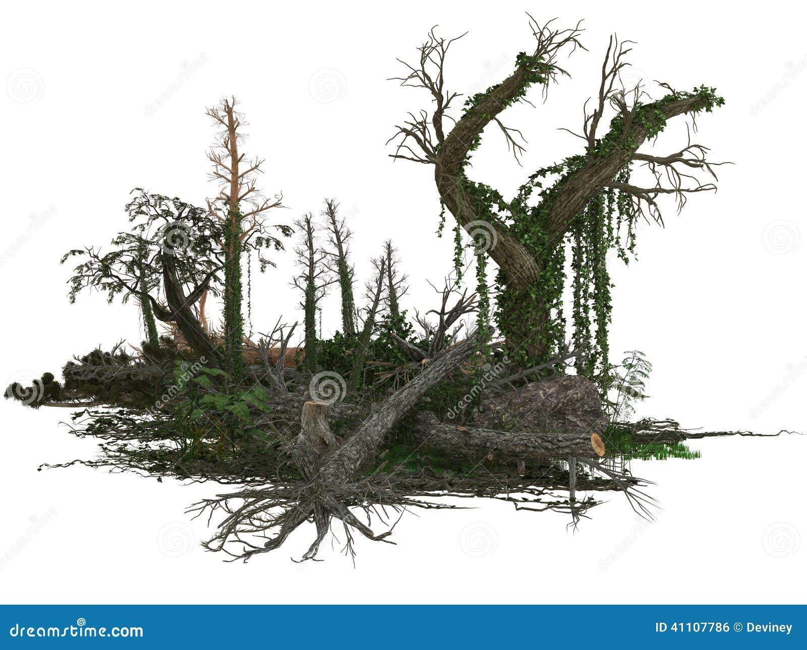 Döda träd och växter