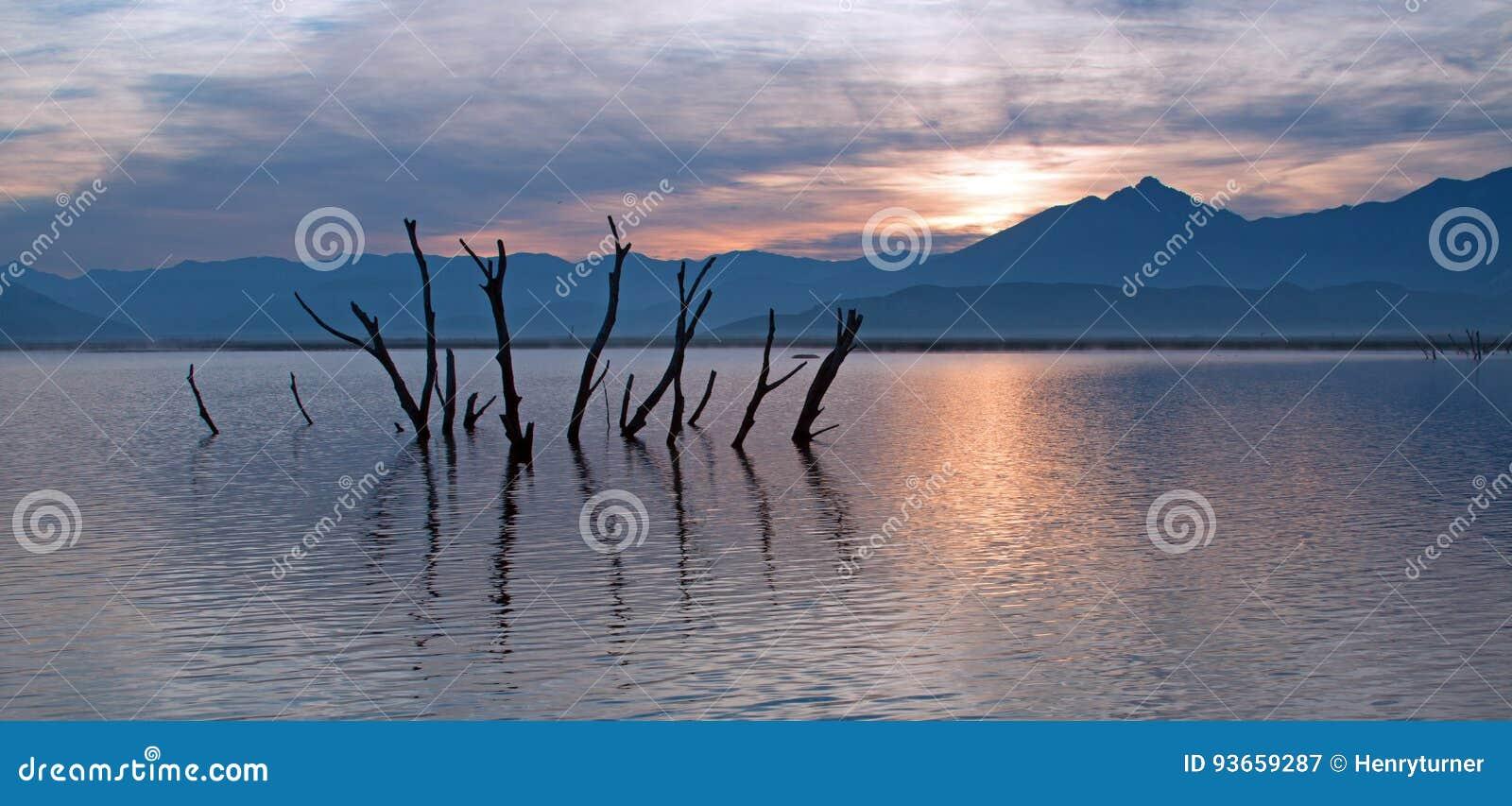 Döda trädstammar och filialer som petar ut ur den torka slågna sjön Isabella på soluppgång i de Sierra Nevada bergen i centralen