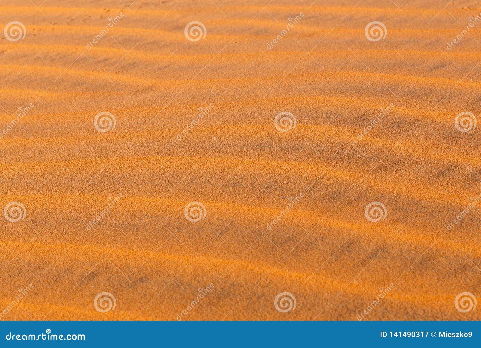 Dünenwellen in Sahara Desert