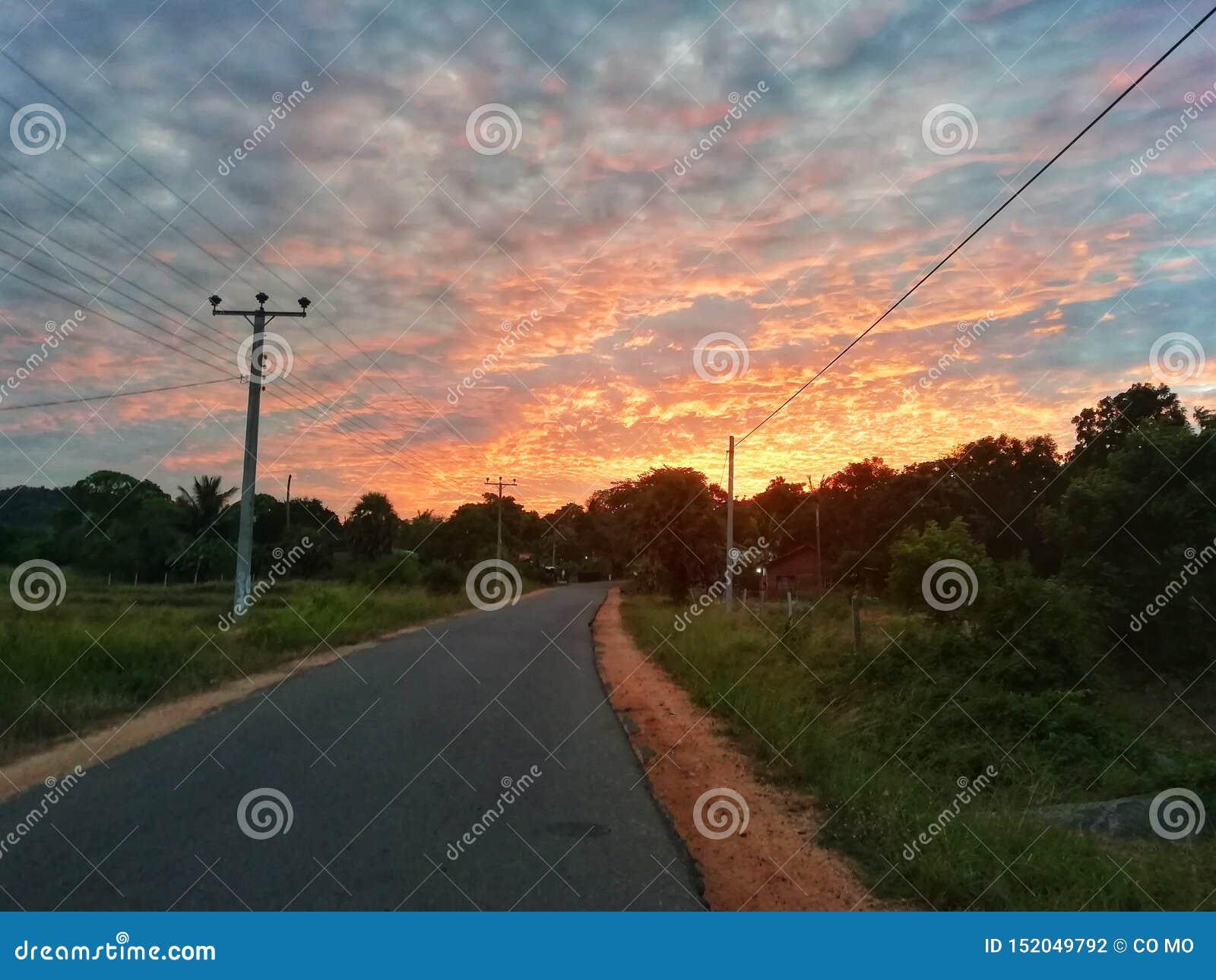 Długa droga z kolorowymi wieczór drzewami i niebem