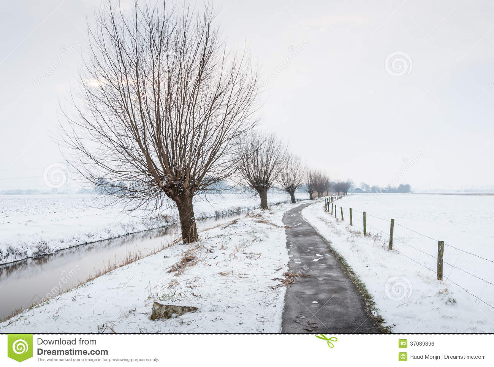 Download Długi Przykop Z Cienkim Lodem W śnieżnym Krajobrazie Zdjęcie Stock - Obraz złożonej z płocha, słupy: 37089896