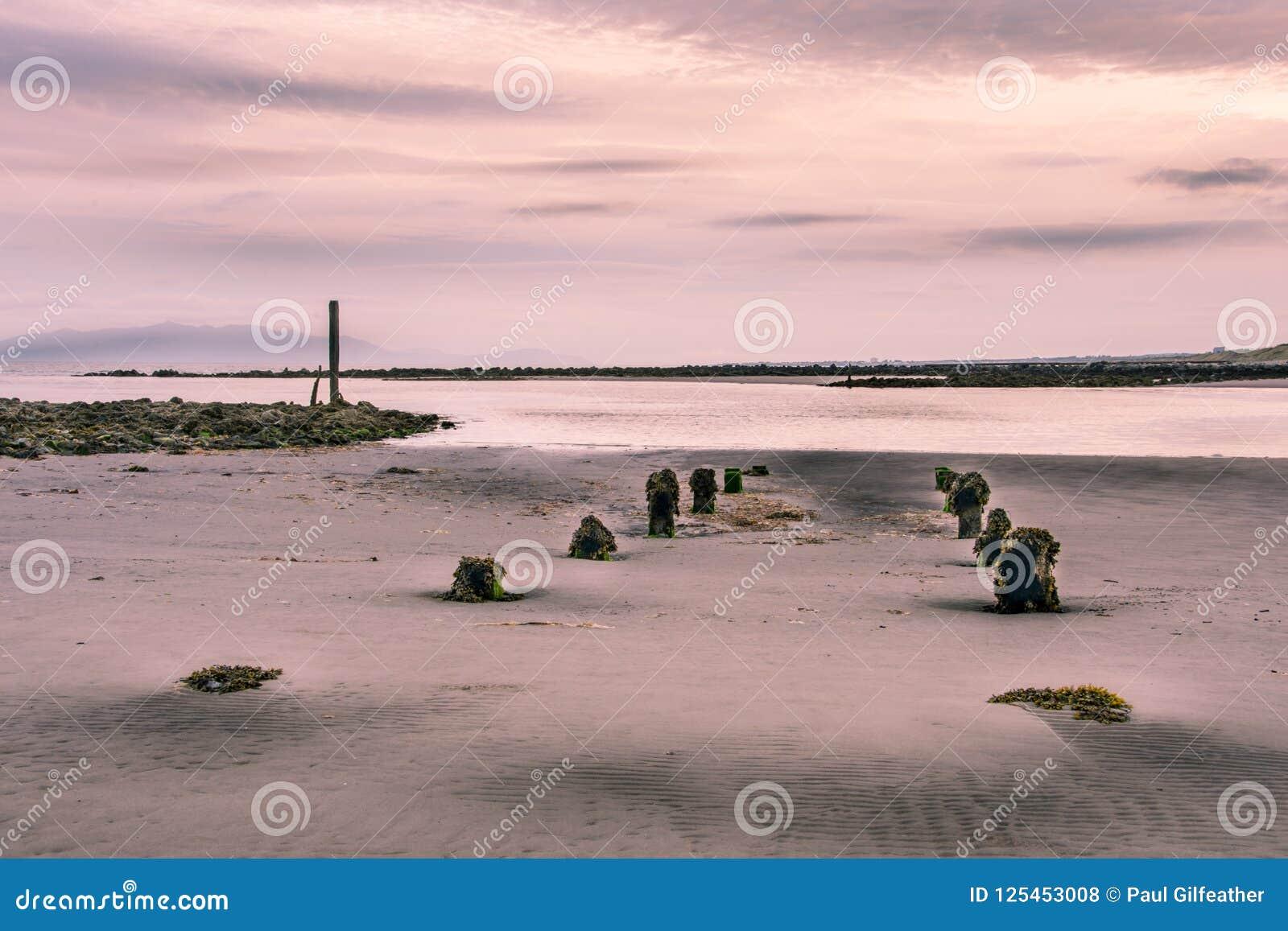 Długi ujawnienie mokra piaskowata plaża na chmurnym chmurzącym dniu W widoku są przetarci korodujący fiszorki wtyka out piasek