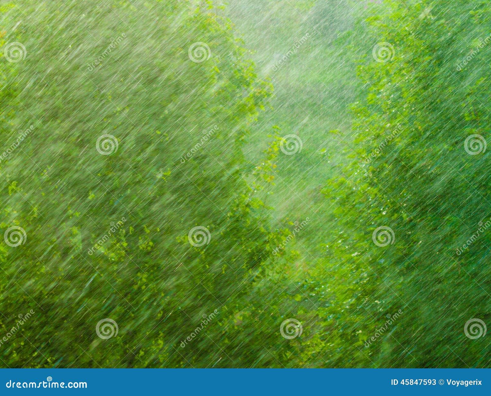 Dżdżysta outside okno zieleni tła tekstura
