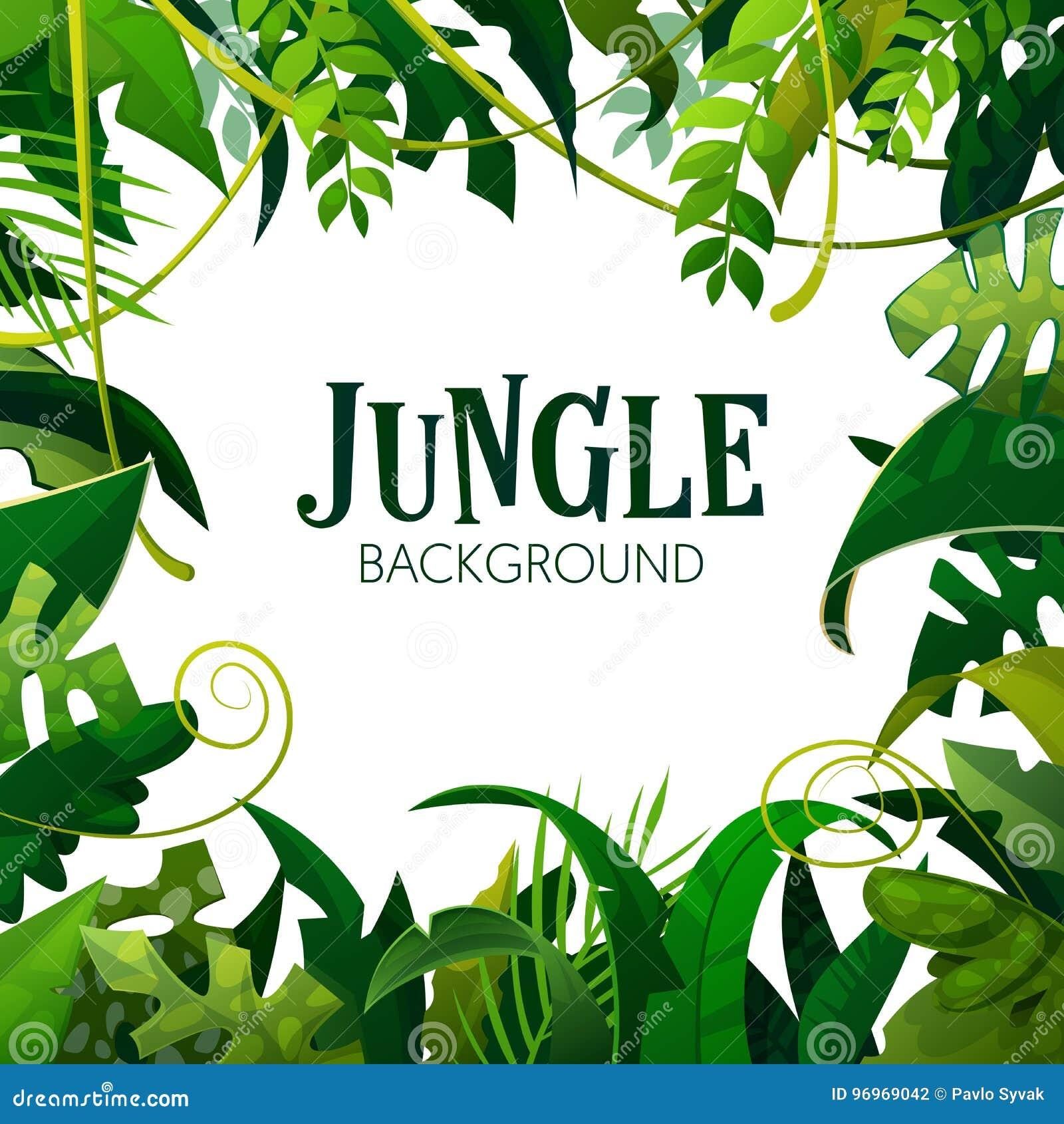 Dżungla liści Tropikalny tło Drzewka Palmowe Plakatowi