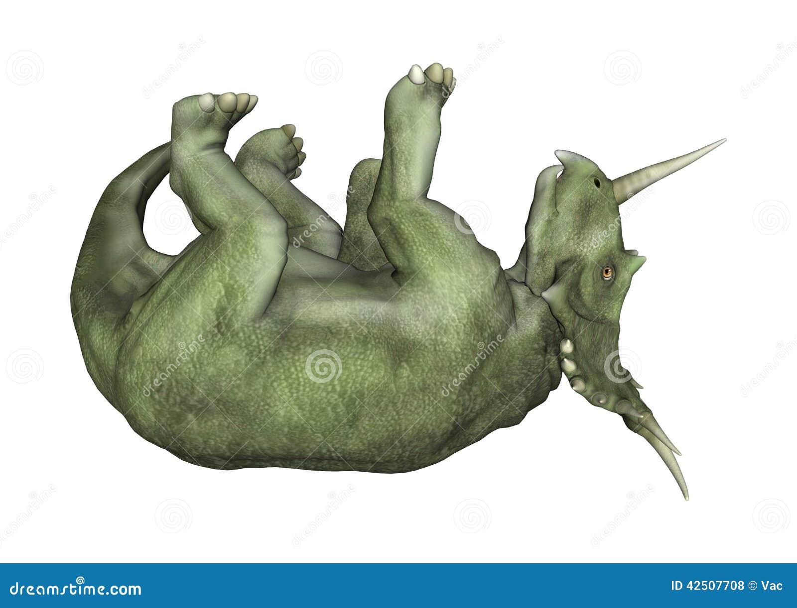 龙�yn�_在白色背景从白垩纪(campanian阶段)的隔绝的食草ceratopsian恐龙类.