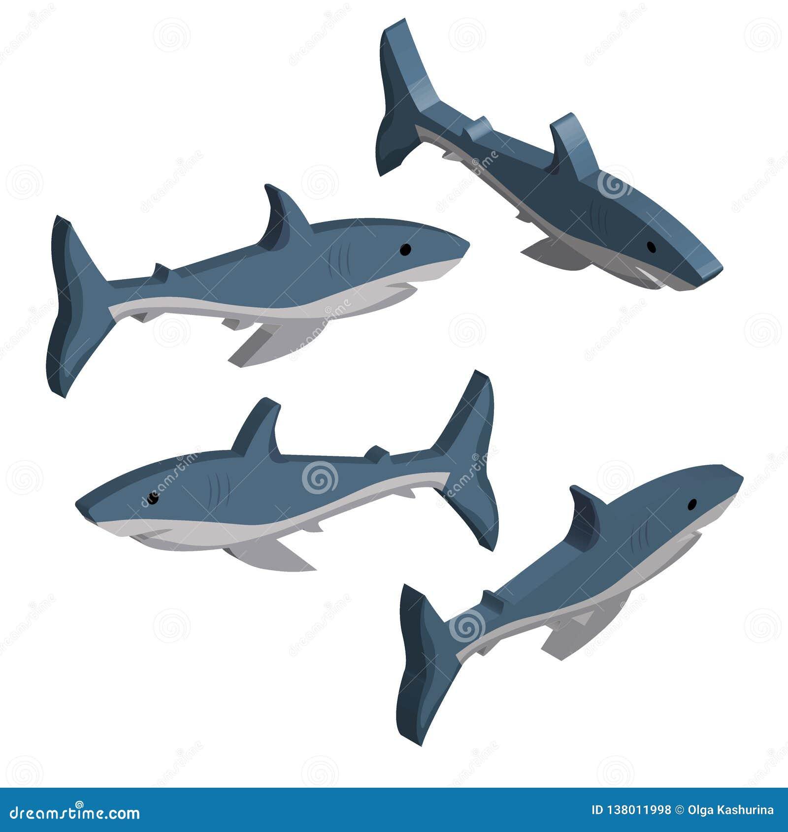 3D ajustou-se dos tubarões azuis isolados no fundo branco