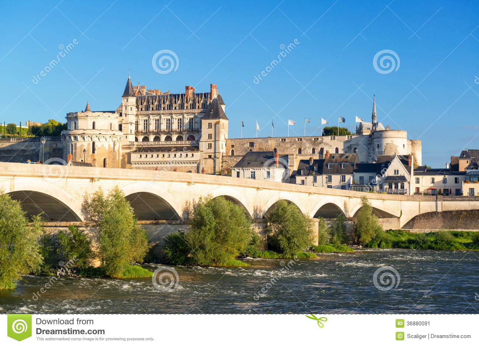 Download D'Amboise Del Castello Sul Fiume La Loira, Francia Immagine Stock - Immagine di reale, castello: 36880091