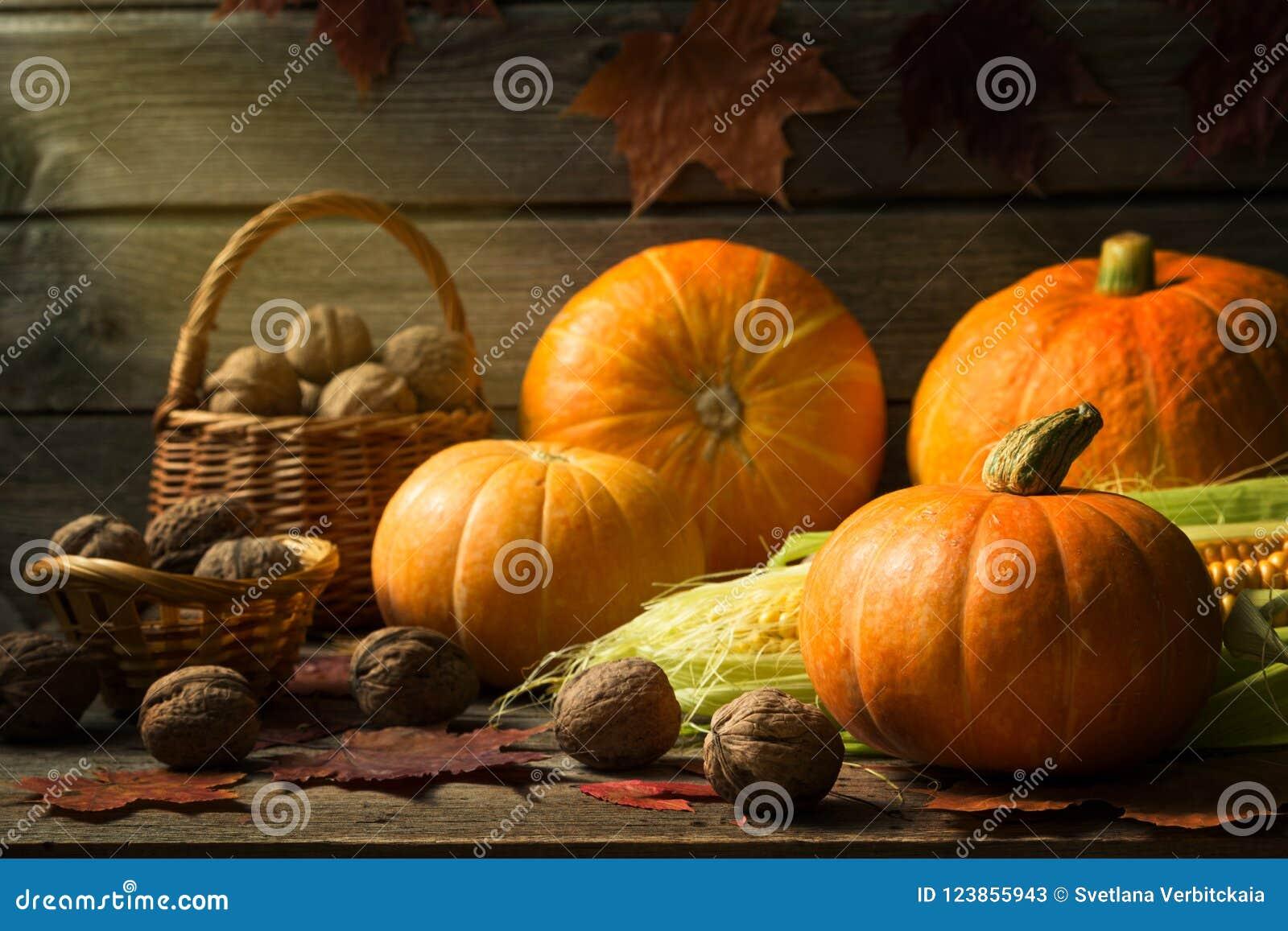 D automne toujours la vie avec des potirons, maïs, écrous