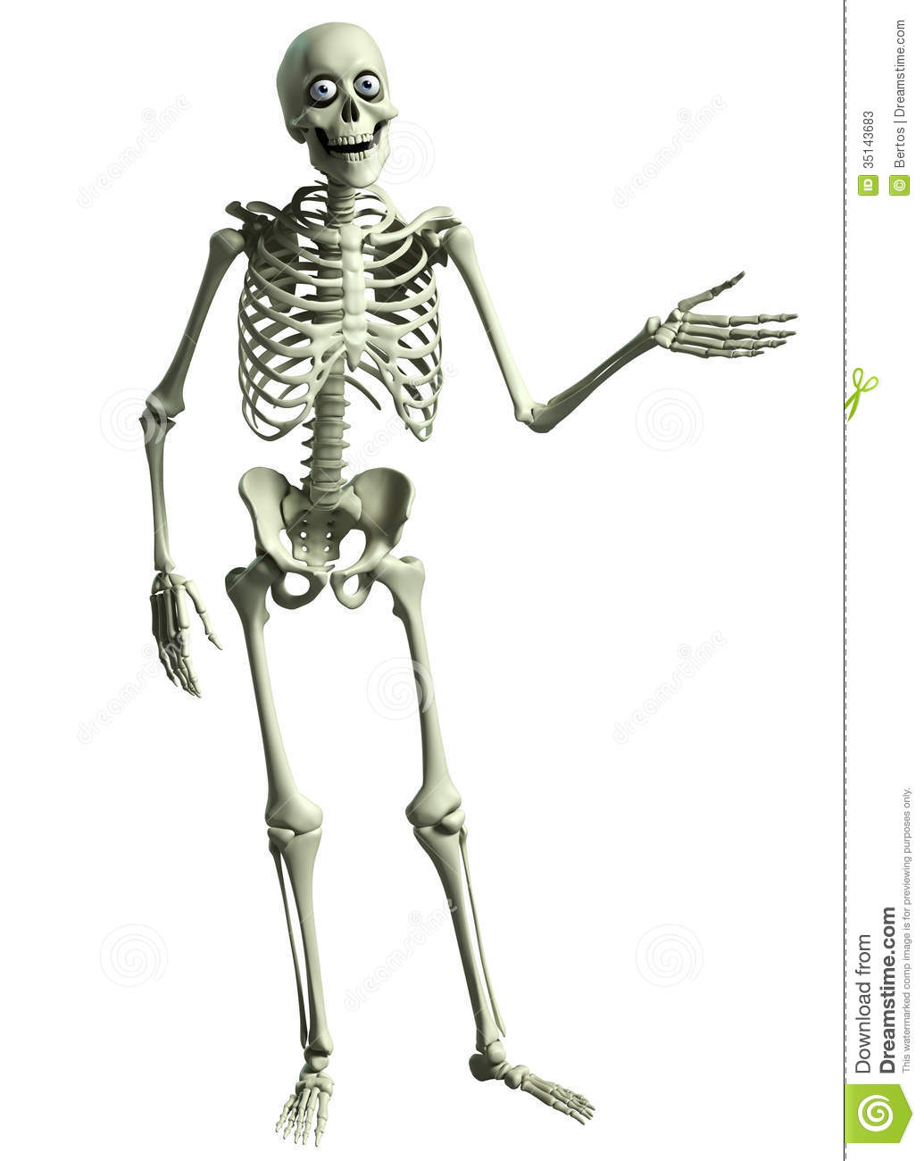 3d cartoon skeleton stock photos - image: 35143683, Skeleton