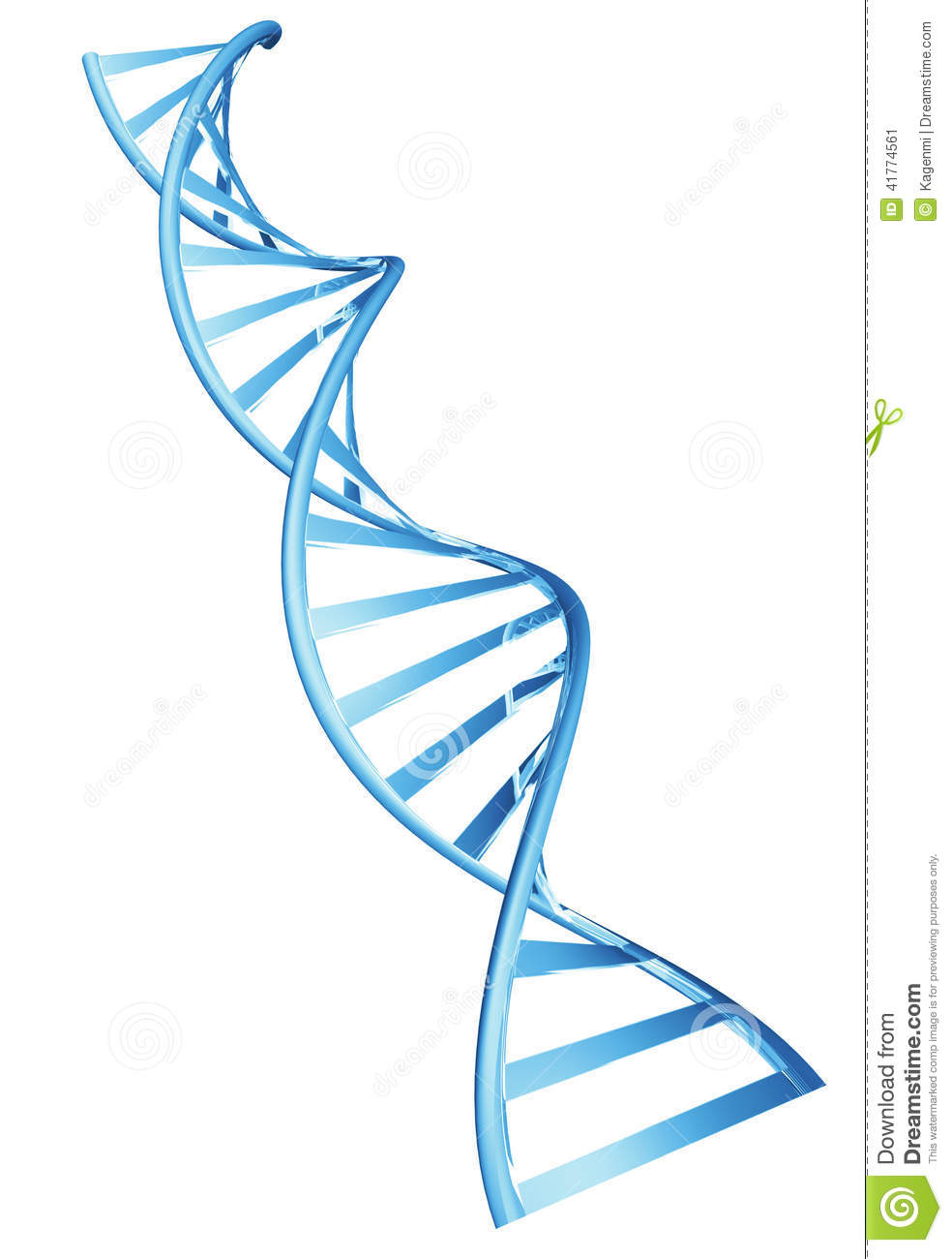 3d double helix spiral structure of a human dna string stock 3d double helix spiral structure of a human dna string ccuart Image collections