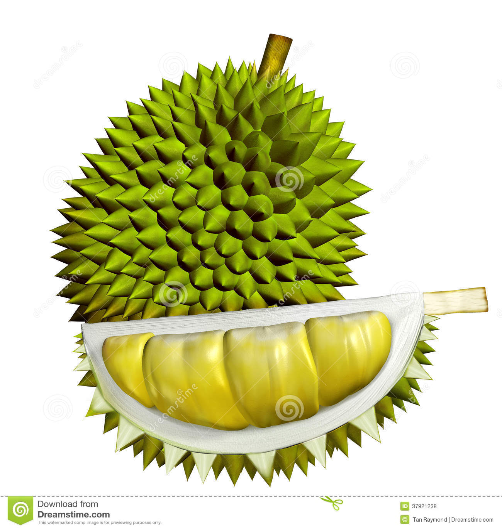 3d Durian Fruits Royalty Free Stock Photos Image 37921238