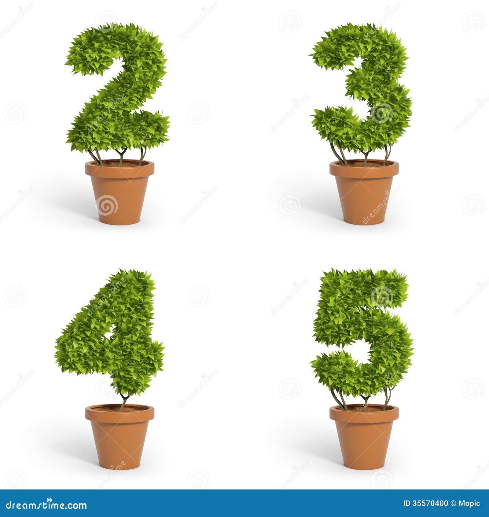 3d Font Pot Plants Stock Photo Image 35570400