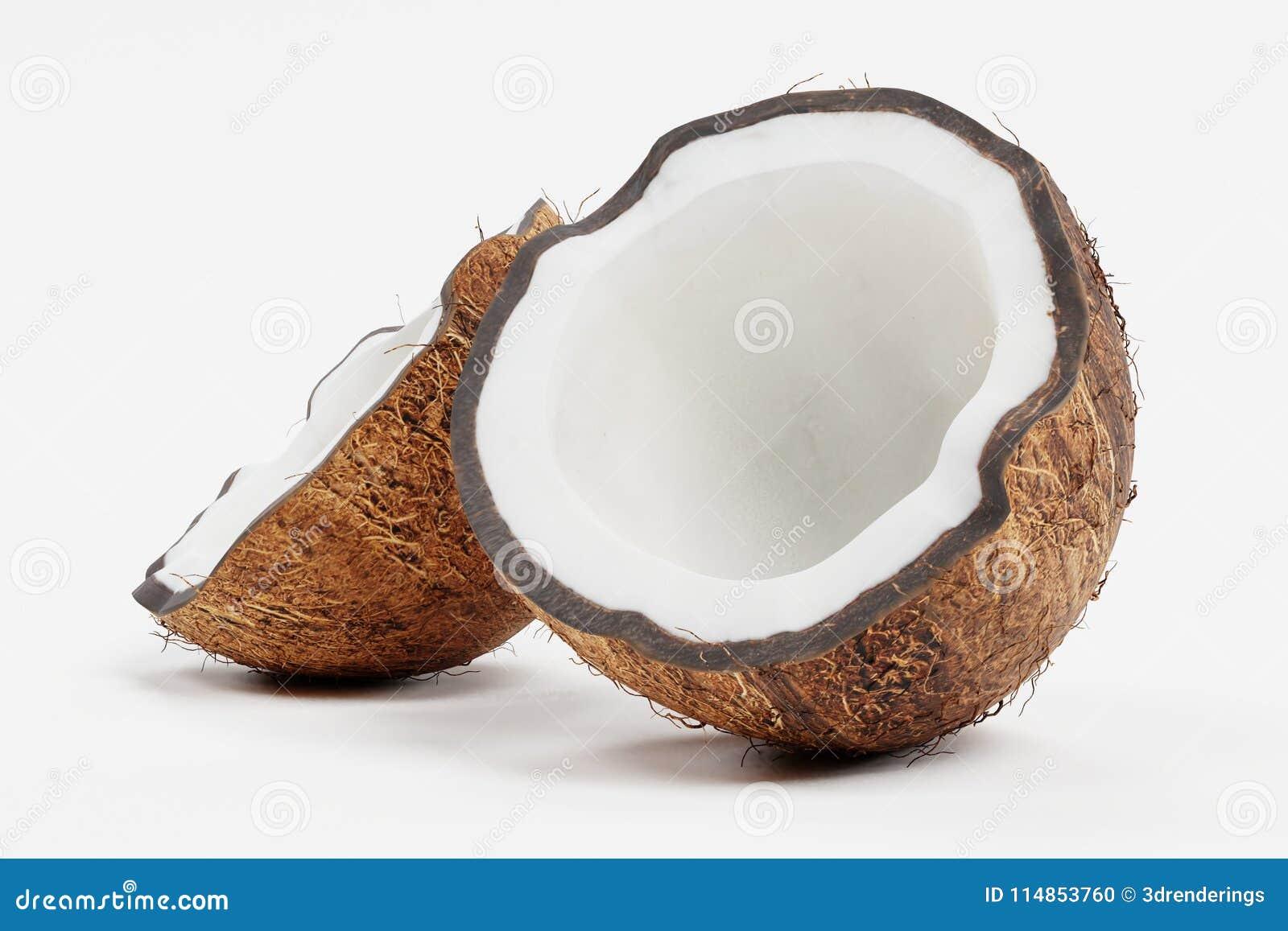 3d framför av kokosnöten