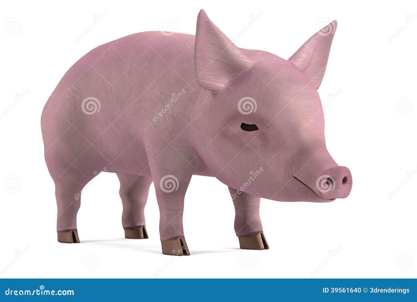 3d framför av litet svin