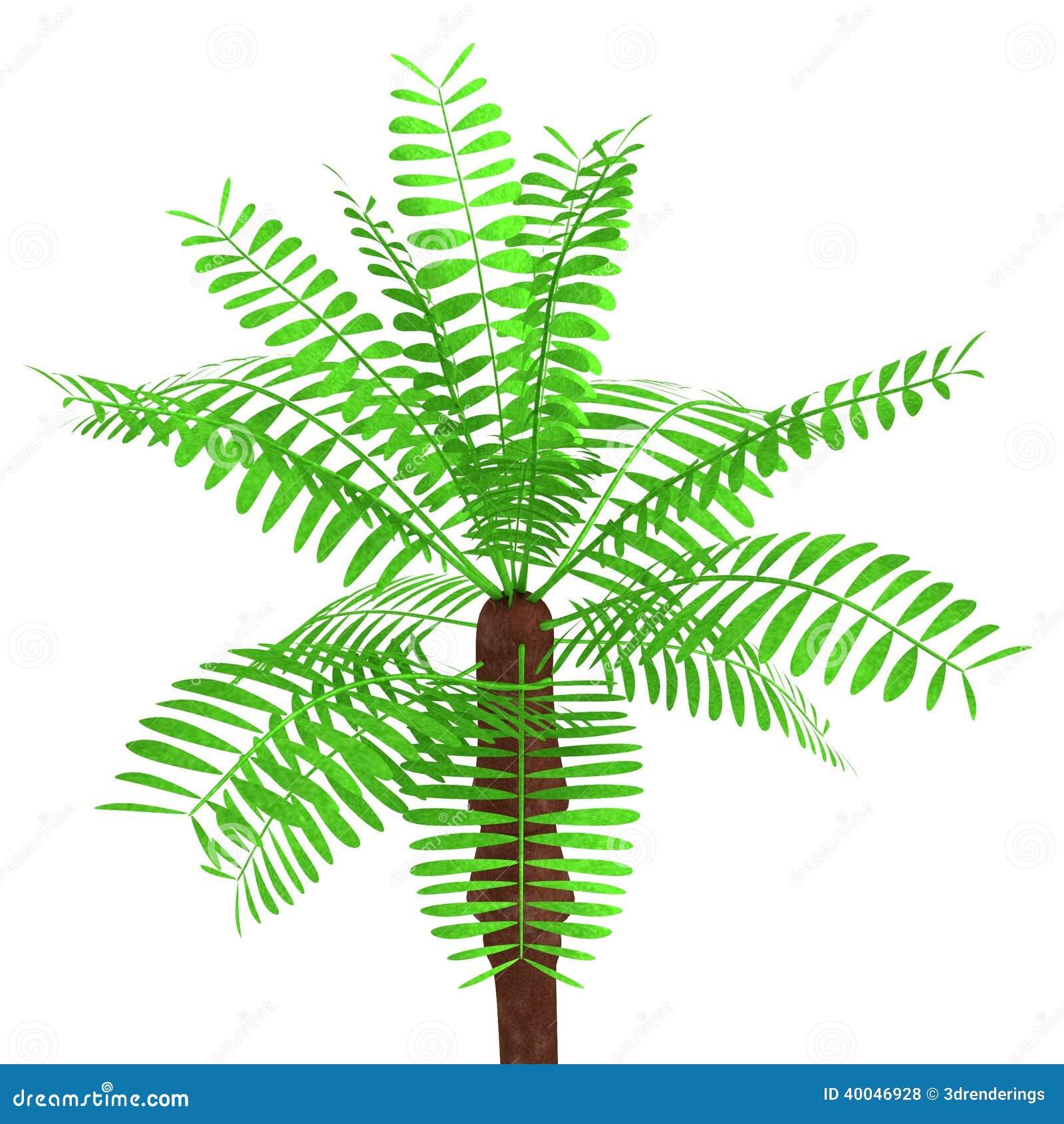 3d geef van palm terug