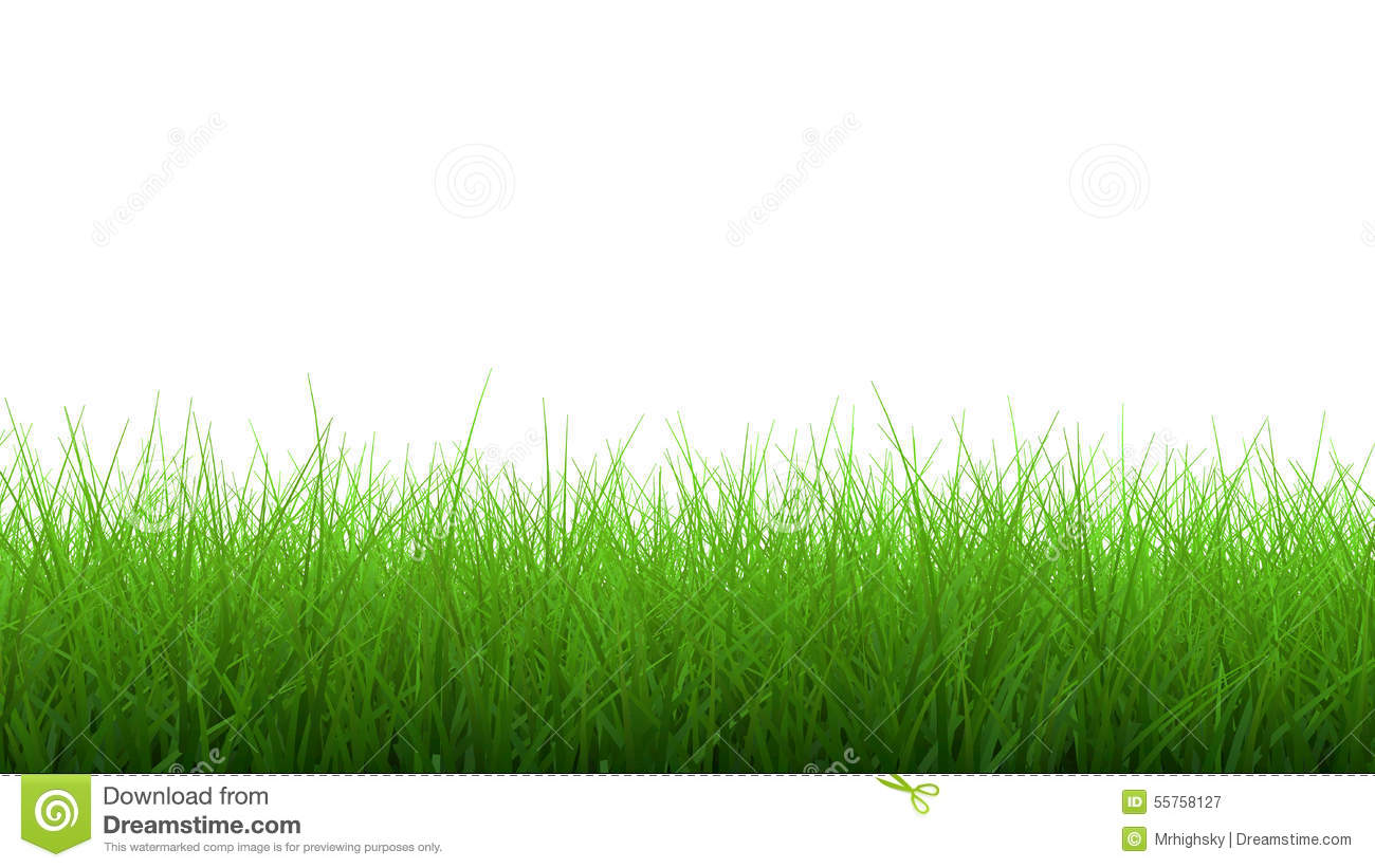 Grass border royalty free cartoon for Best grasses for borders