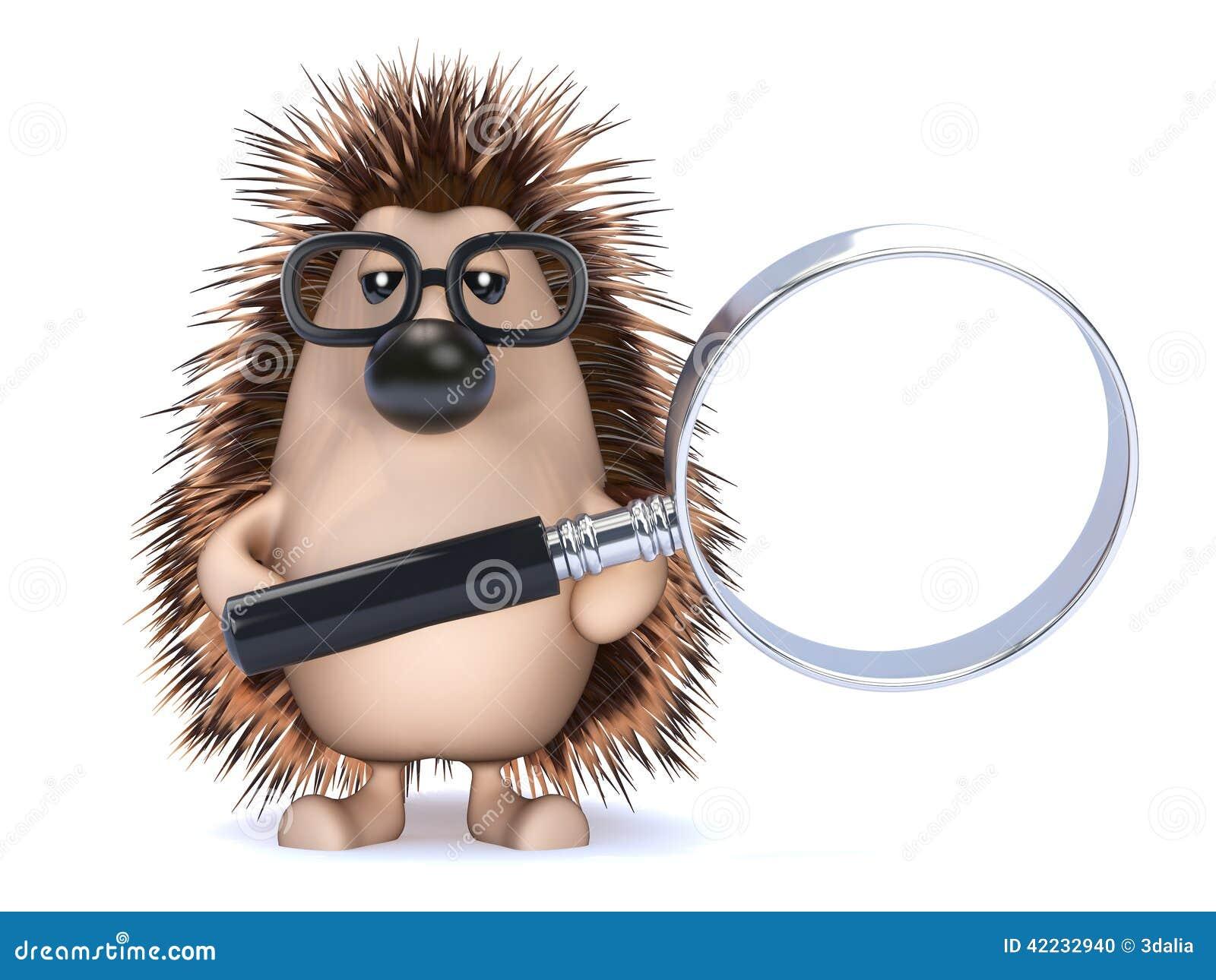 Hedgehog Web Design