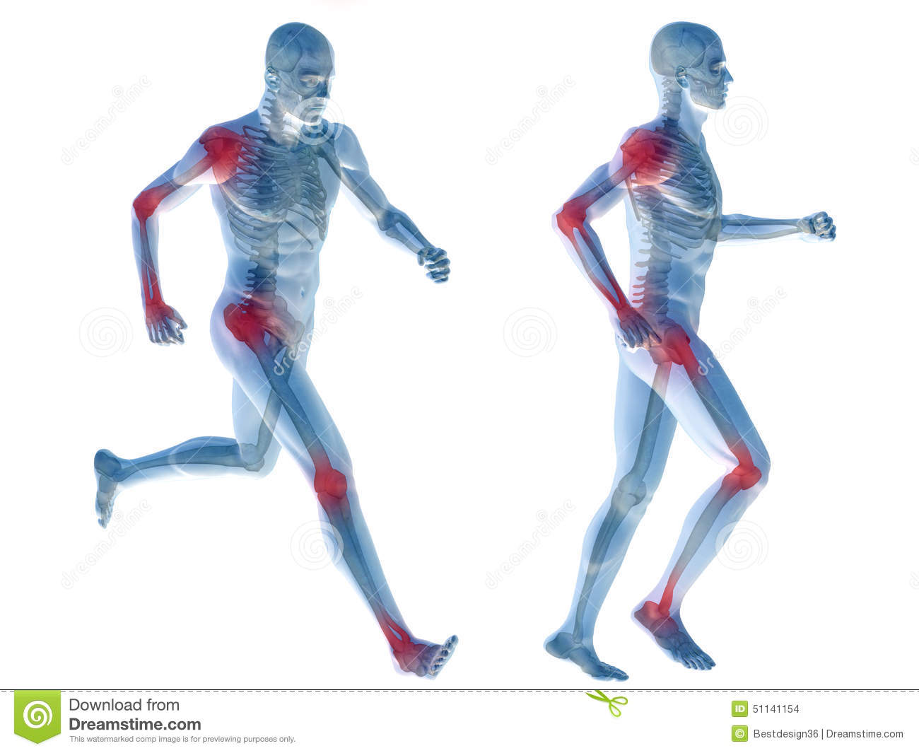 3D Human Man Pain Anatomy Isolated Stock Illustration - Image ...