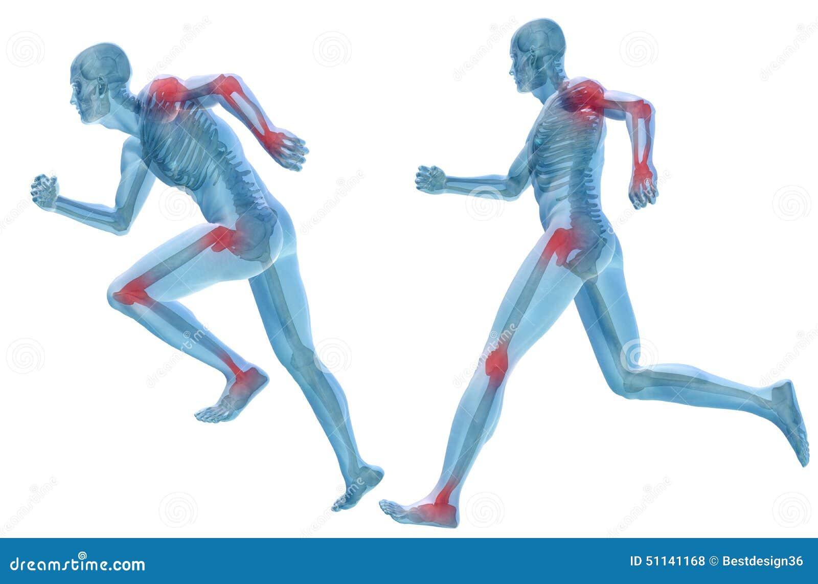 3D Human Man Pain Anatomy Isolated Stock Illustration - Image ...
