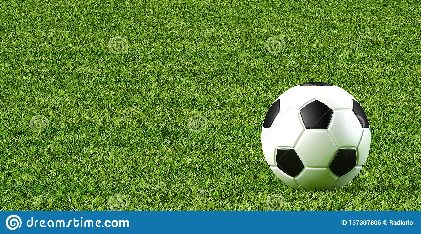 Soccer ball and lawn