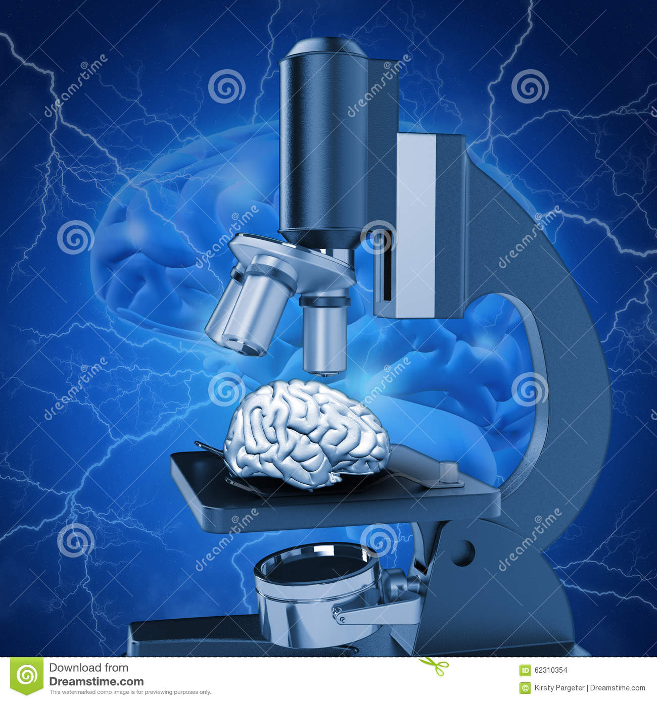 alzheimers paper research