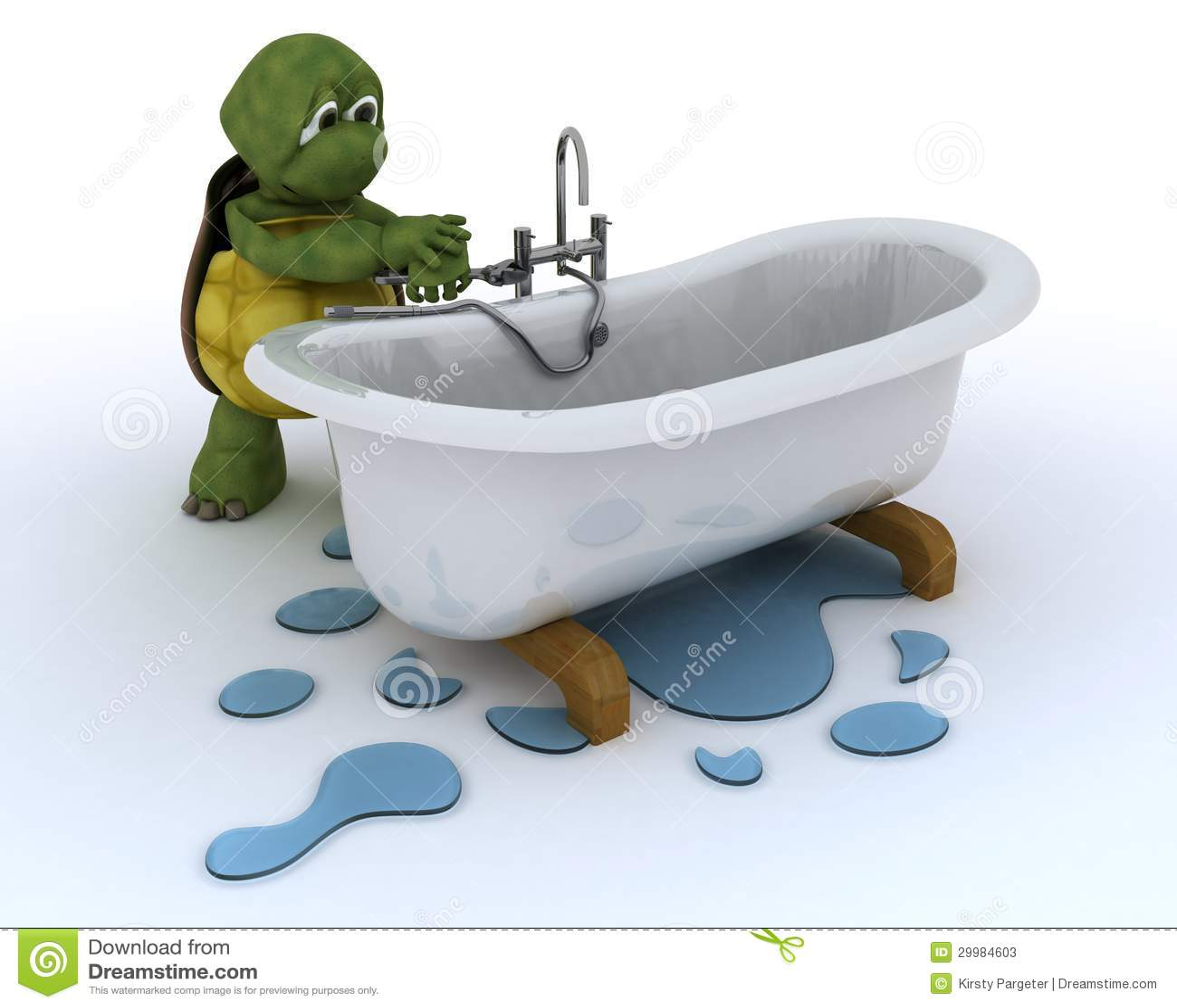 Contratante do encanamento da tartaruga