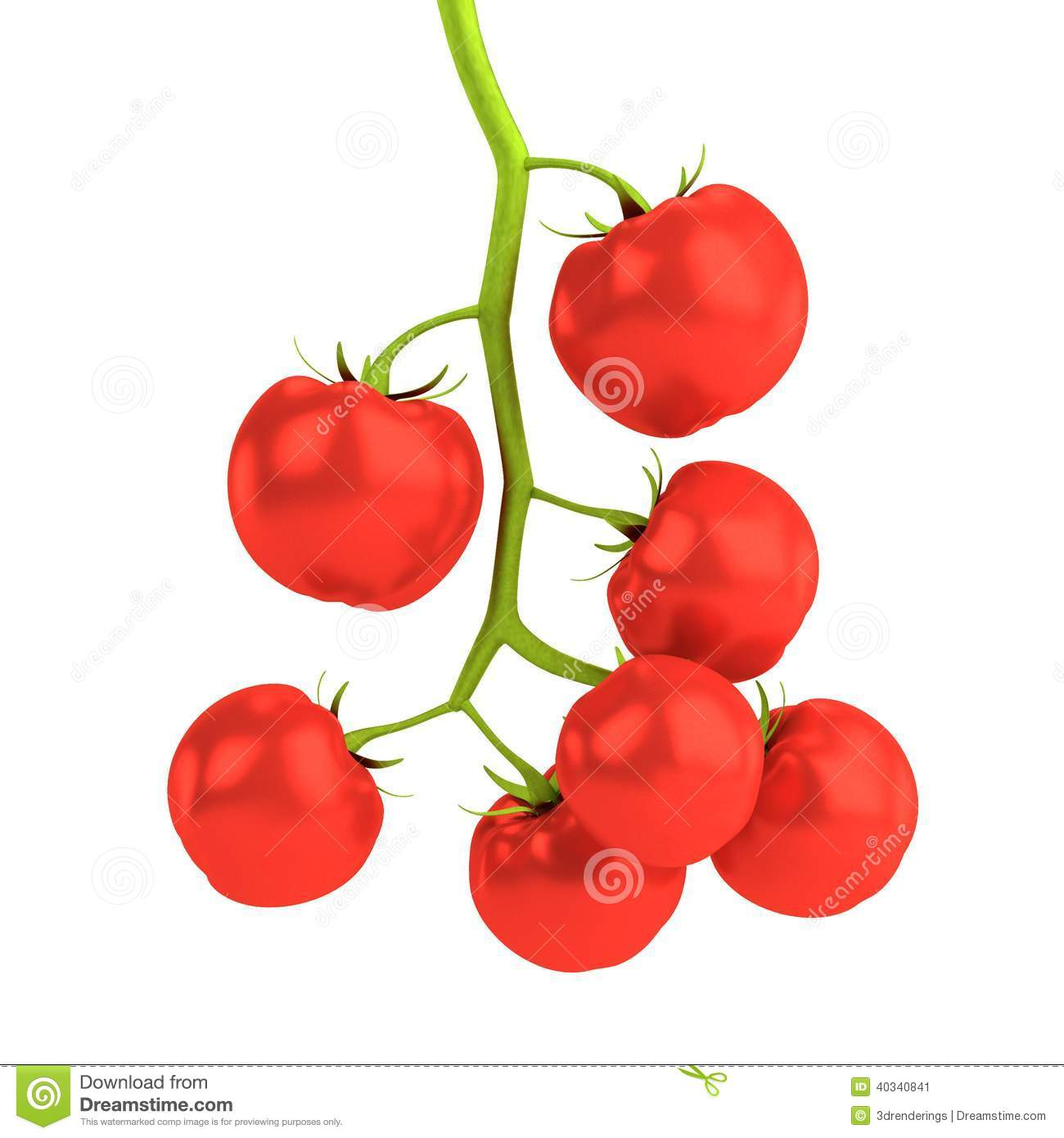 3d rendent des tomates cerises illustration stock illustration du cerise illustration 40340841 - Dessin cerise ...