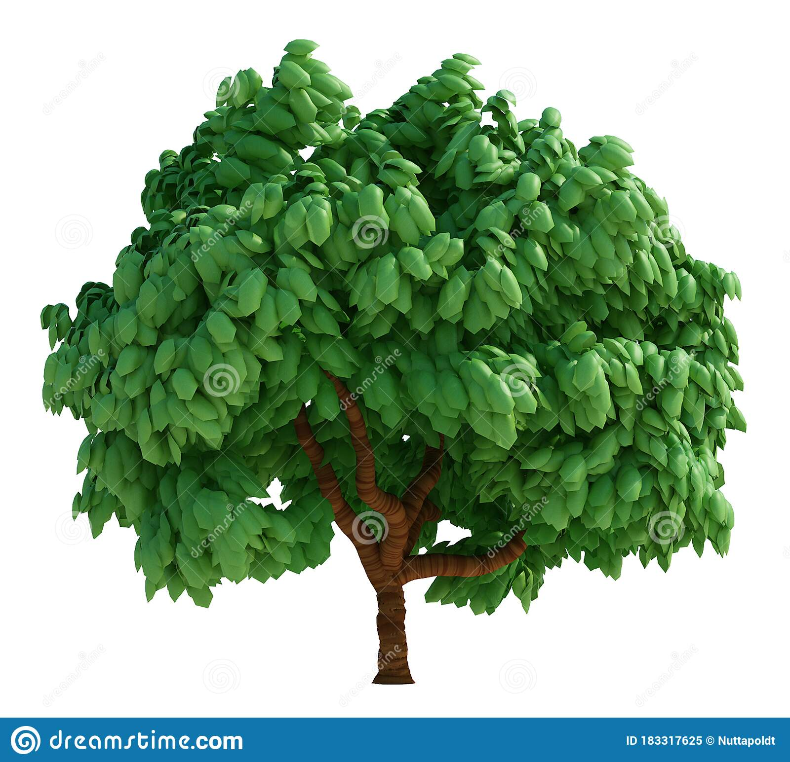 3d Render Cartoon Tree Isolated On White Stock Illustration Illustration Of Plant Forest 183317625 Some stylized tree models for fun based on concepts by scott gwynn. 3d render cartoon tree isolated on white stock illustration illustration of plant forest 183317625