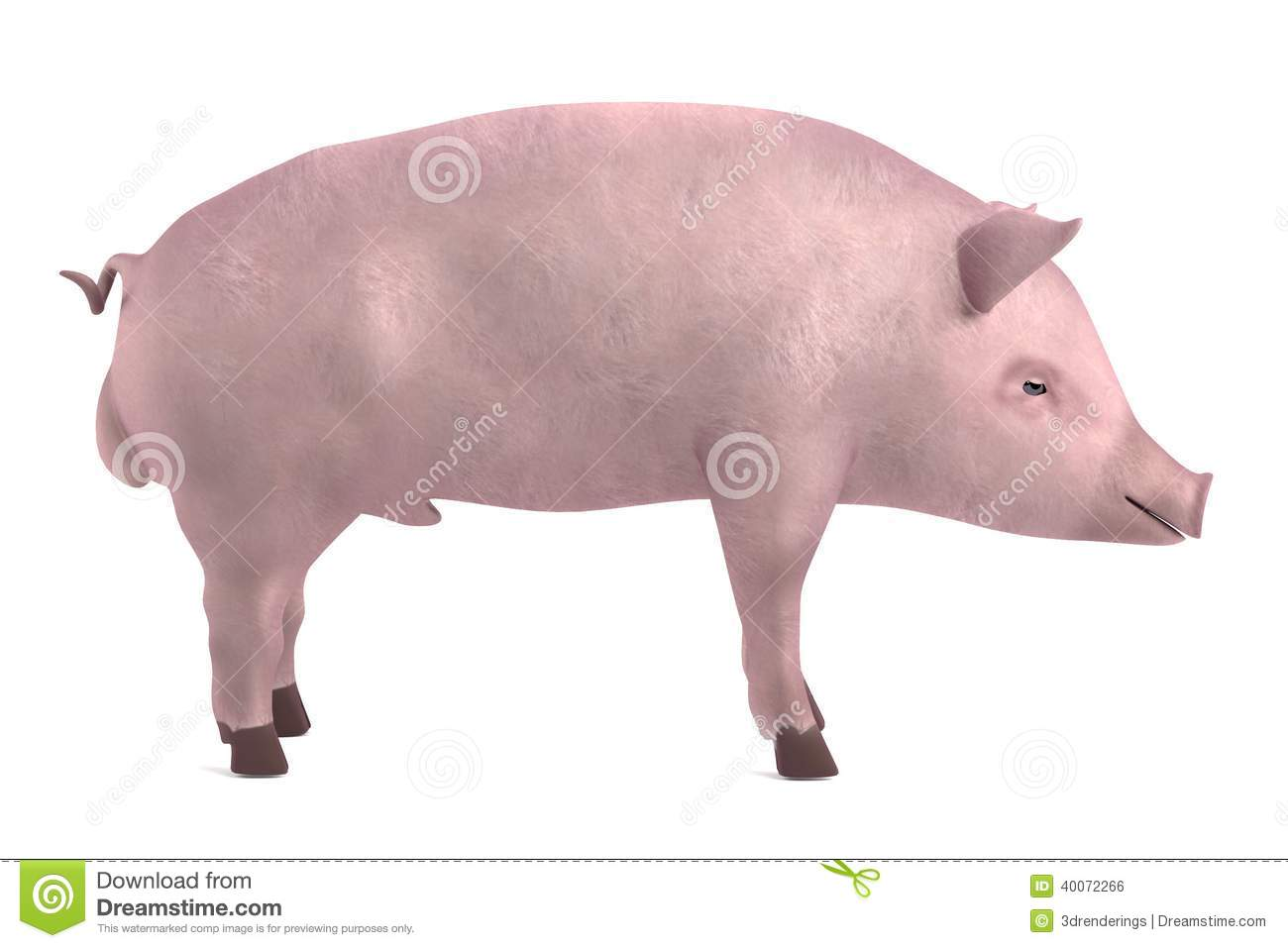 Male pig cartoon characters - photo#1