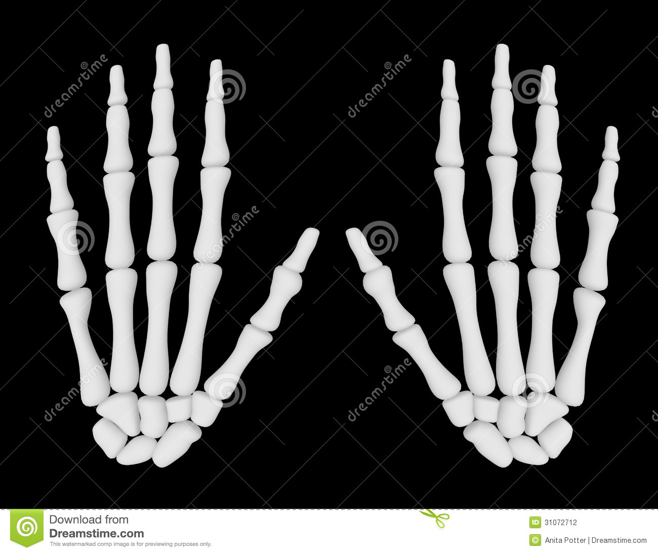3d Render Of A Pair Of Skeleton Hands Stock Photography - Image ...