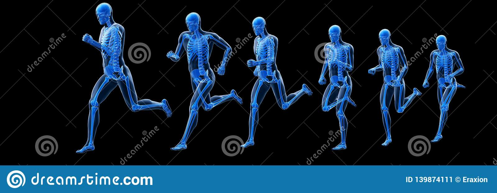 A running mans skeleton