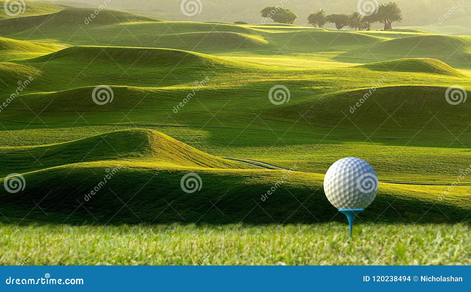 3d rendering ładny widok piłka golfowa na właścicielu z golfem f