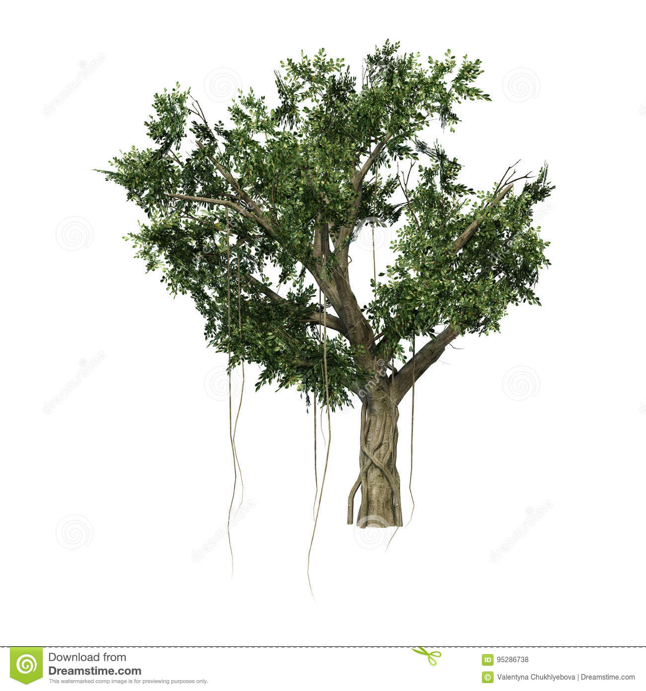 3D Rendering Banyan Tree On White Stock Photo - Image of ficus