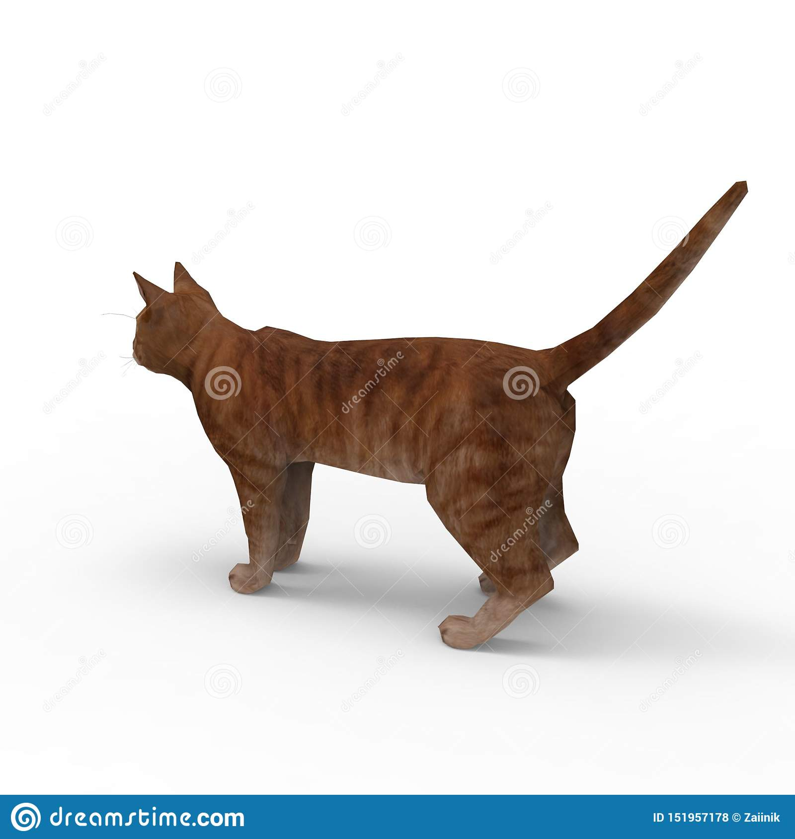 3d Rendering Of Cat Created By Using A Blender Tool Stock