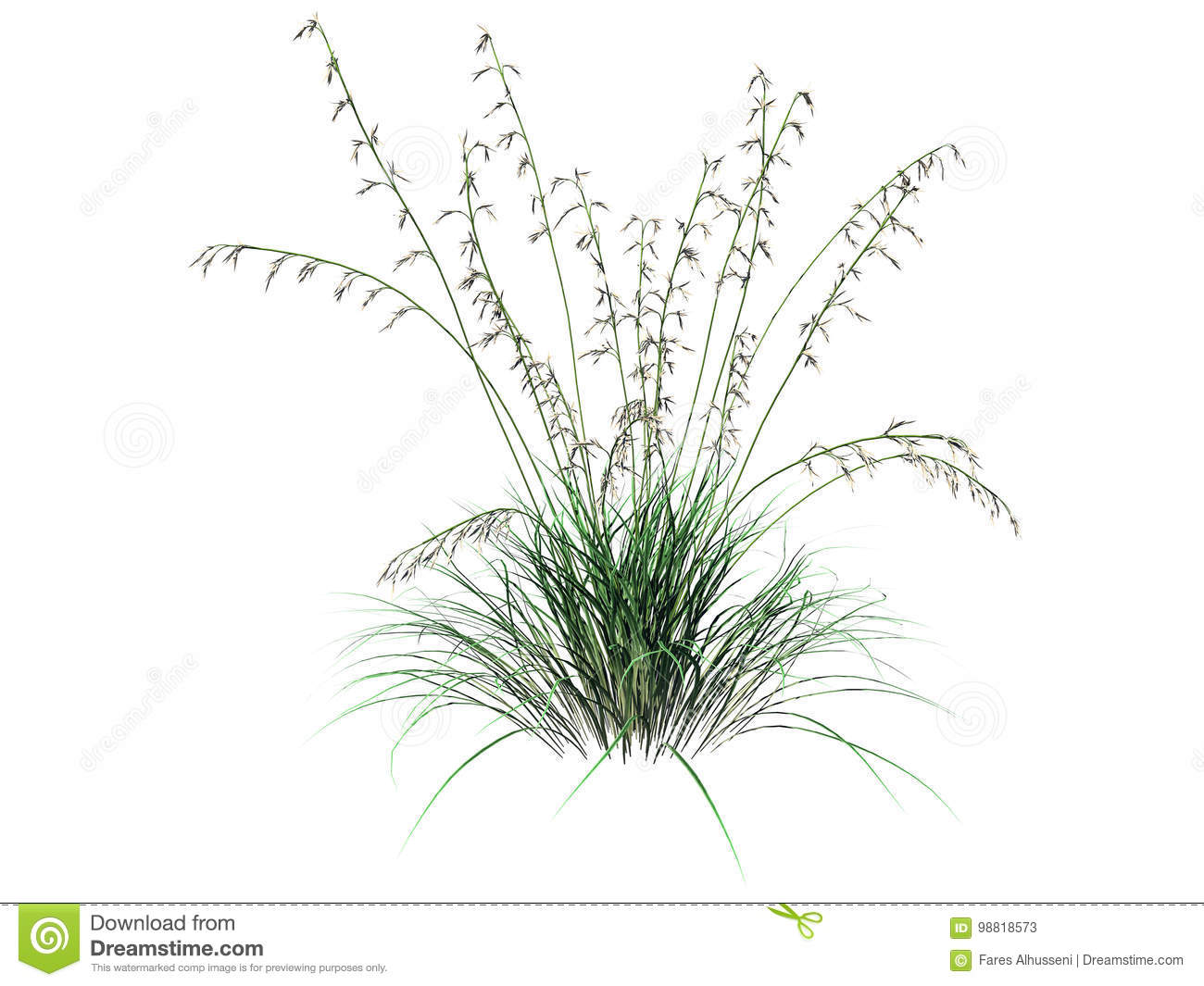 3d rendering of flower bush isolated on white can be used for foreground design
