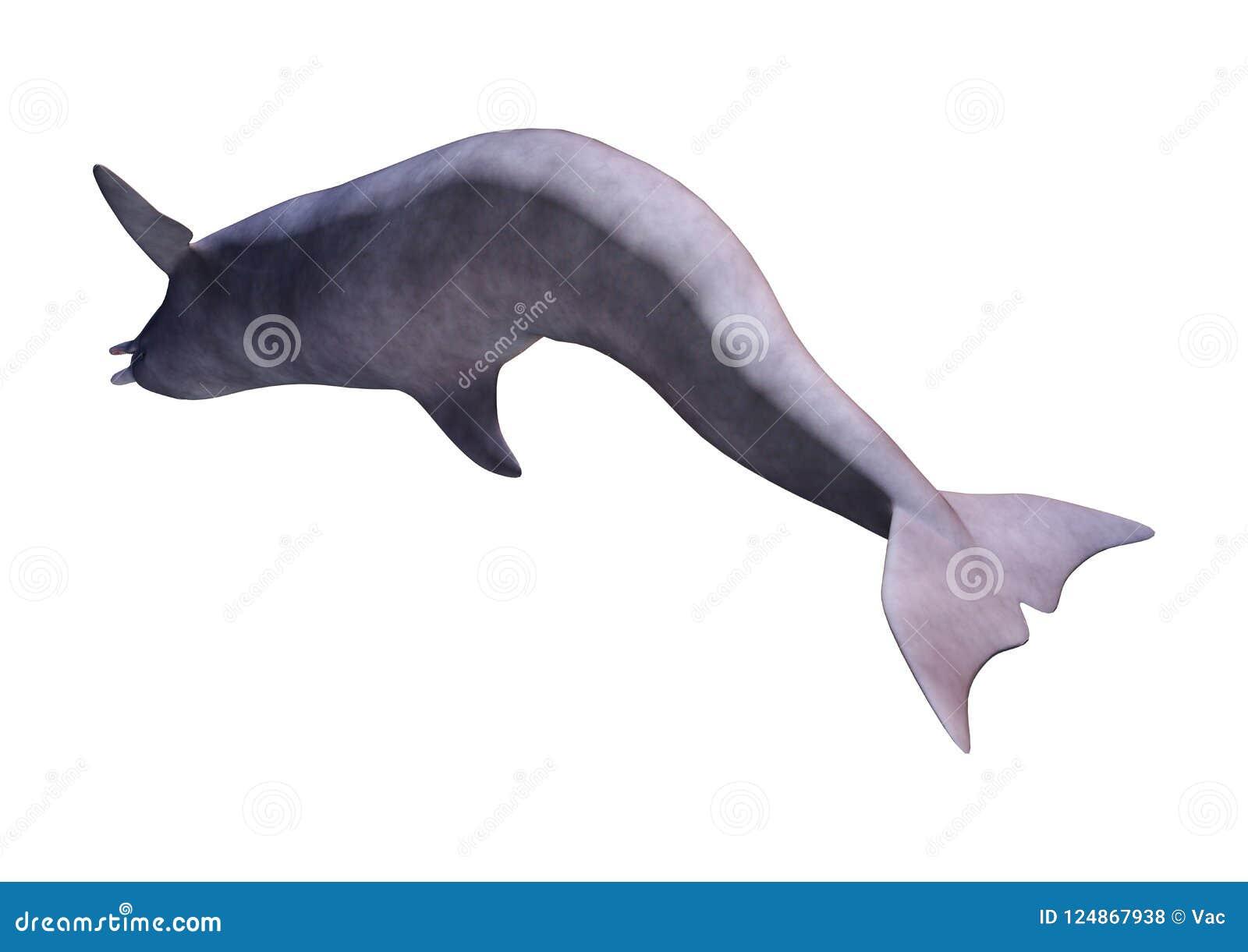 3D renderingu delfin na bielu