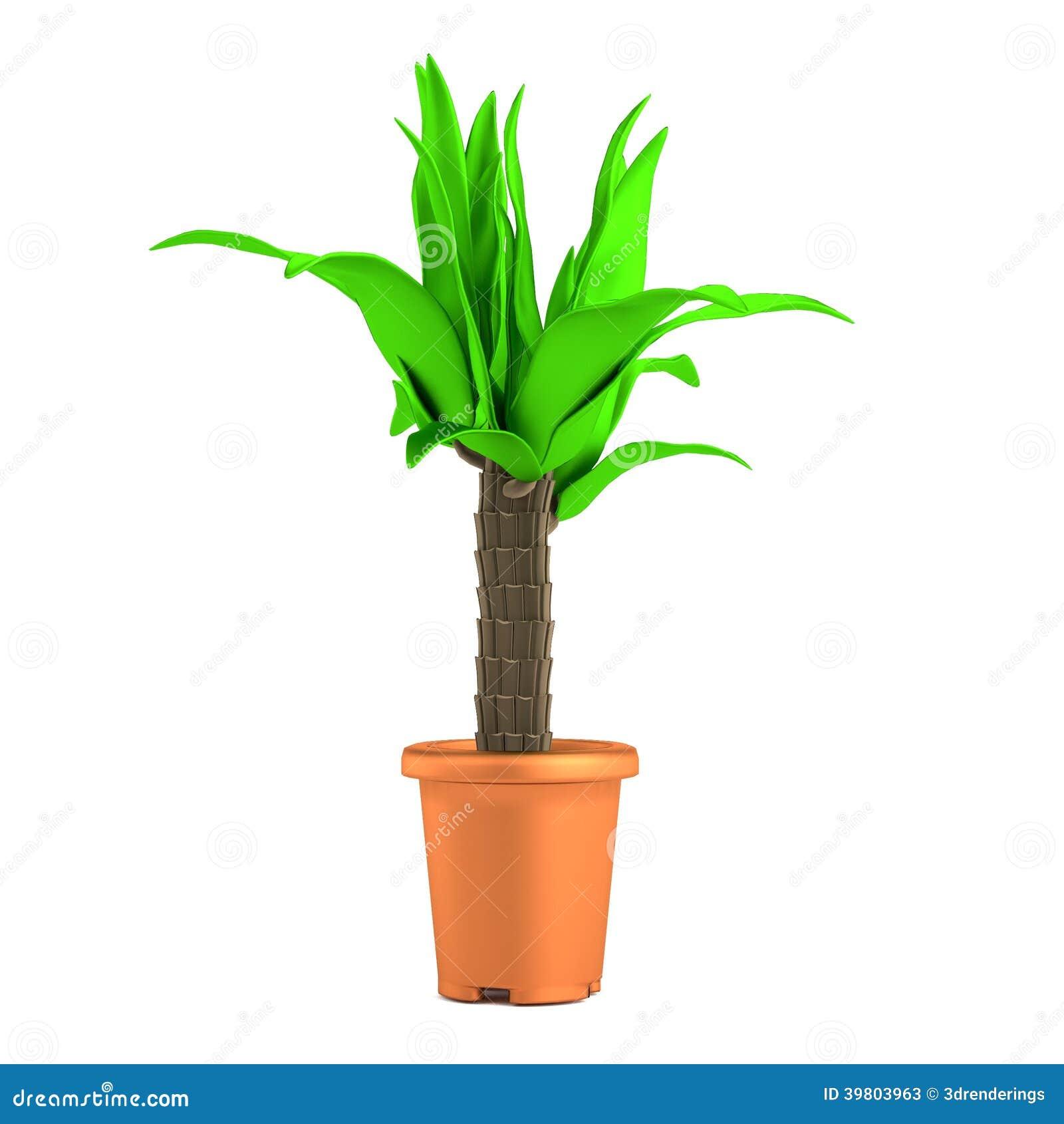 3d rendono della palma