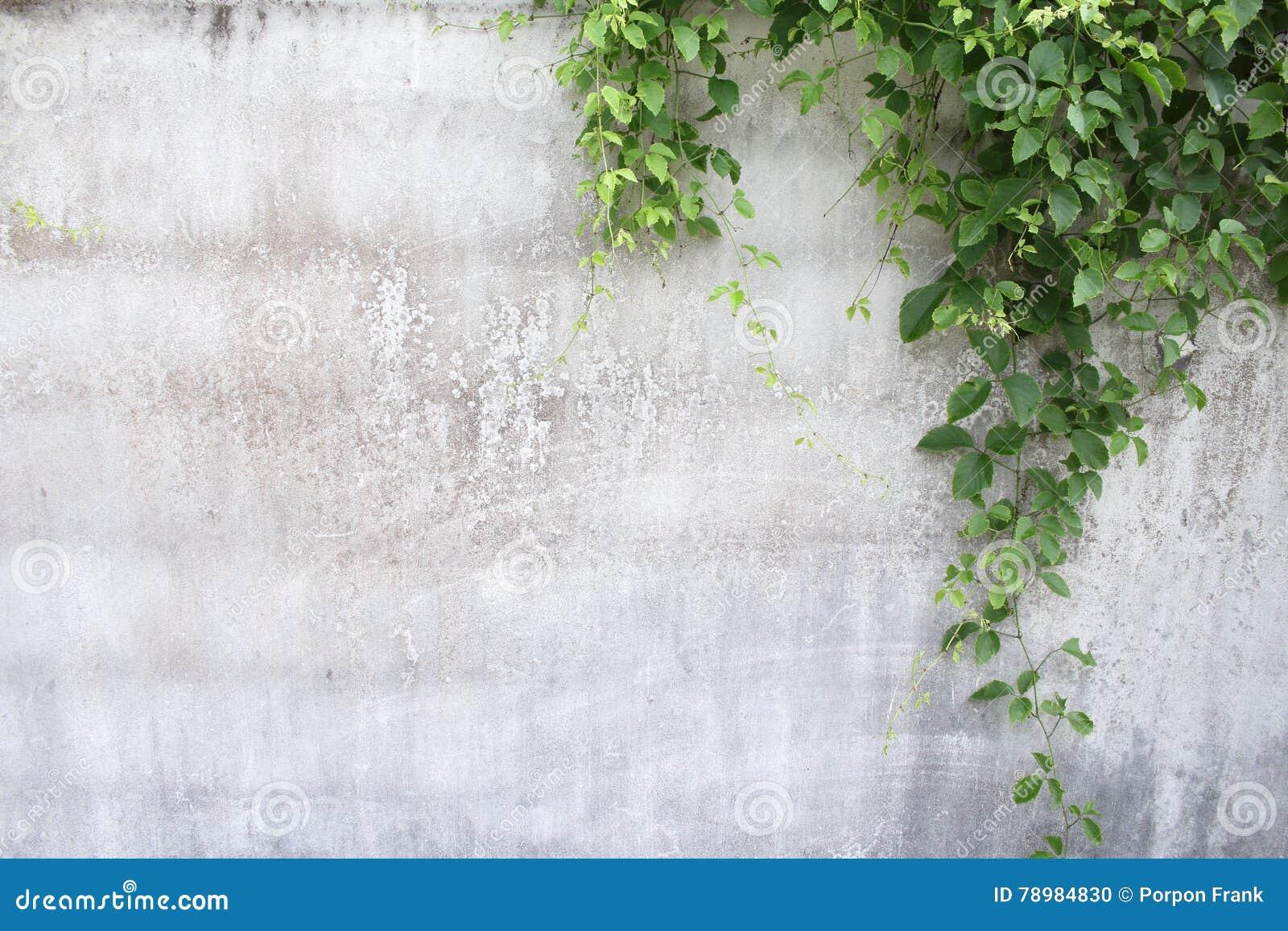 3d tło odpłaca się tekstury ścianę