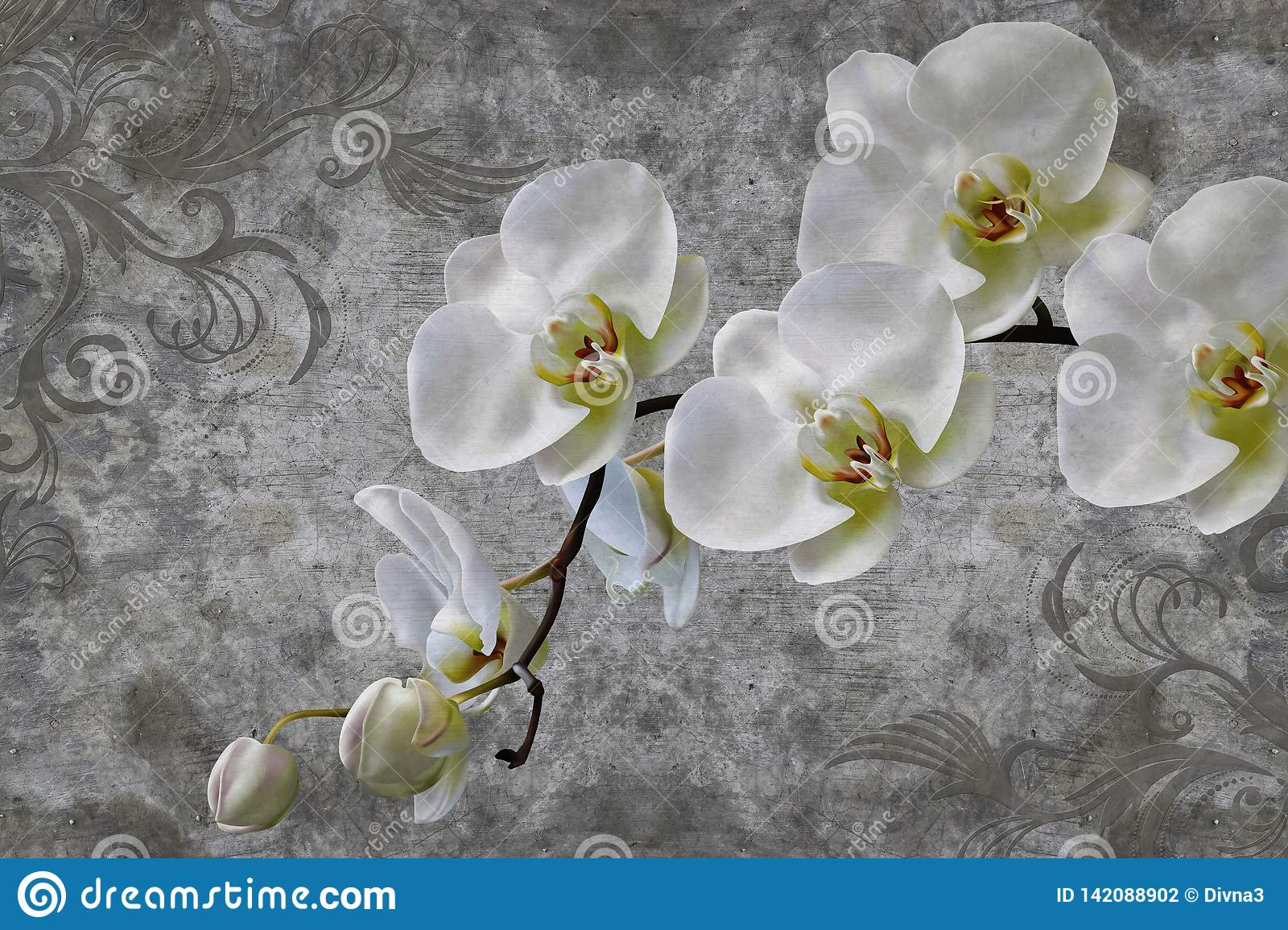 d wallpaper orchids flower concrete wall textured background original panel will turn your room most recent world 142088902