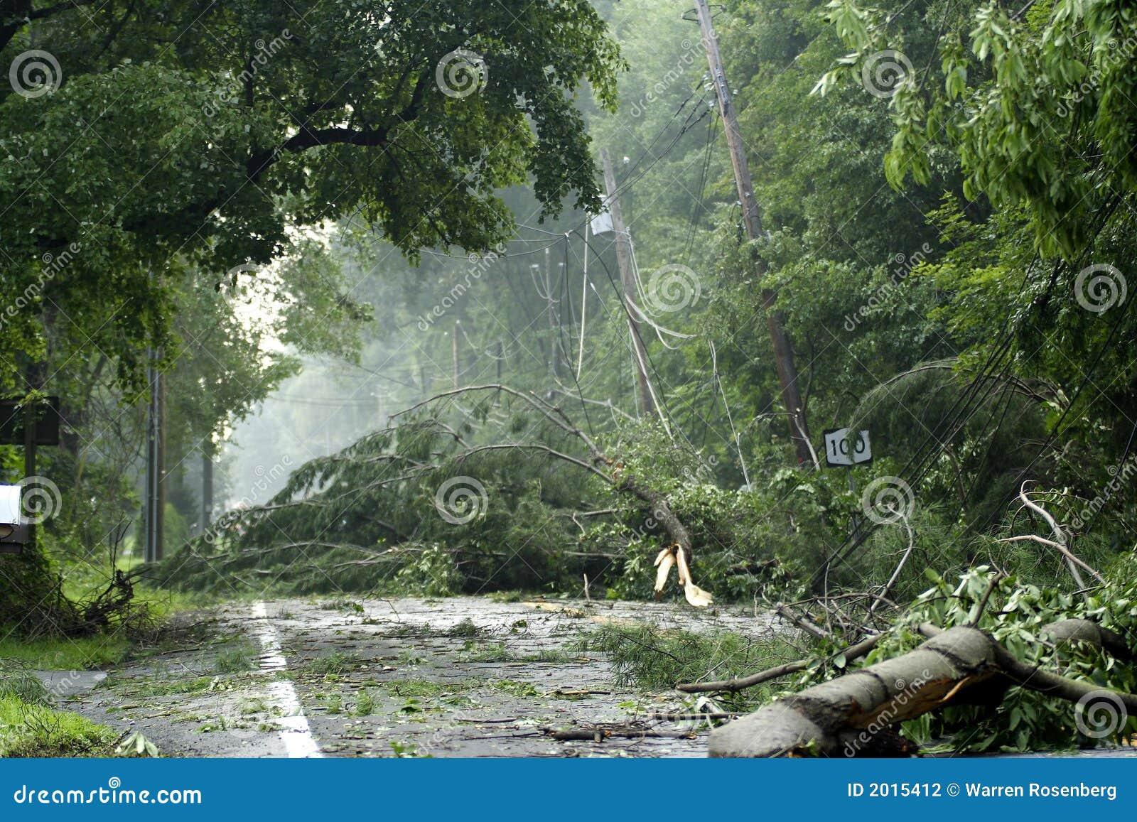 Daño de la tormenta
