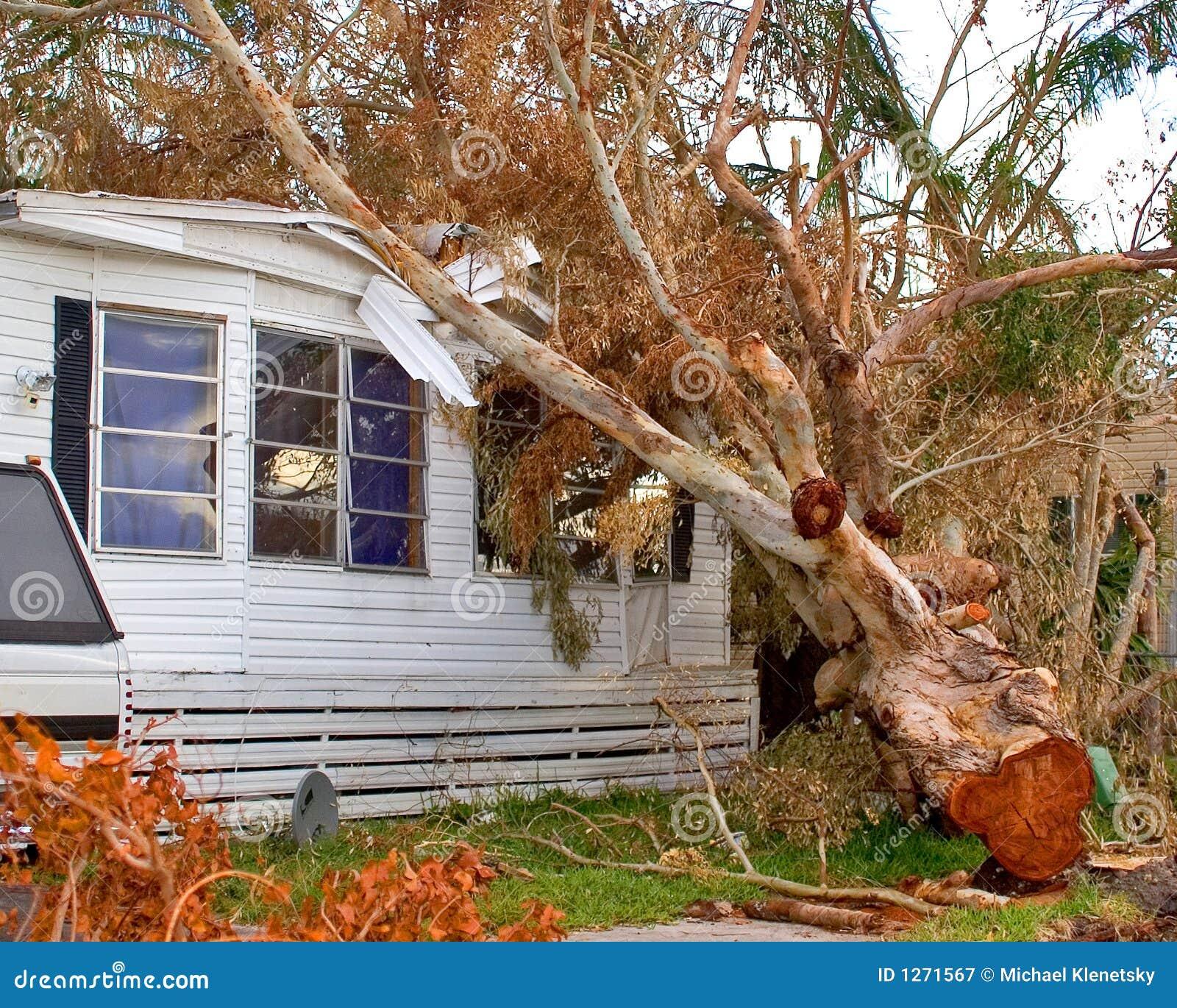 Daño del huracán