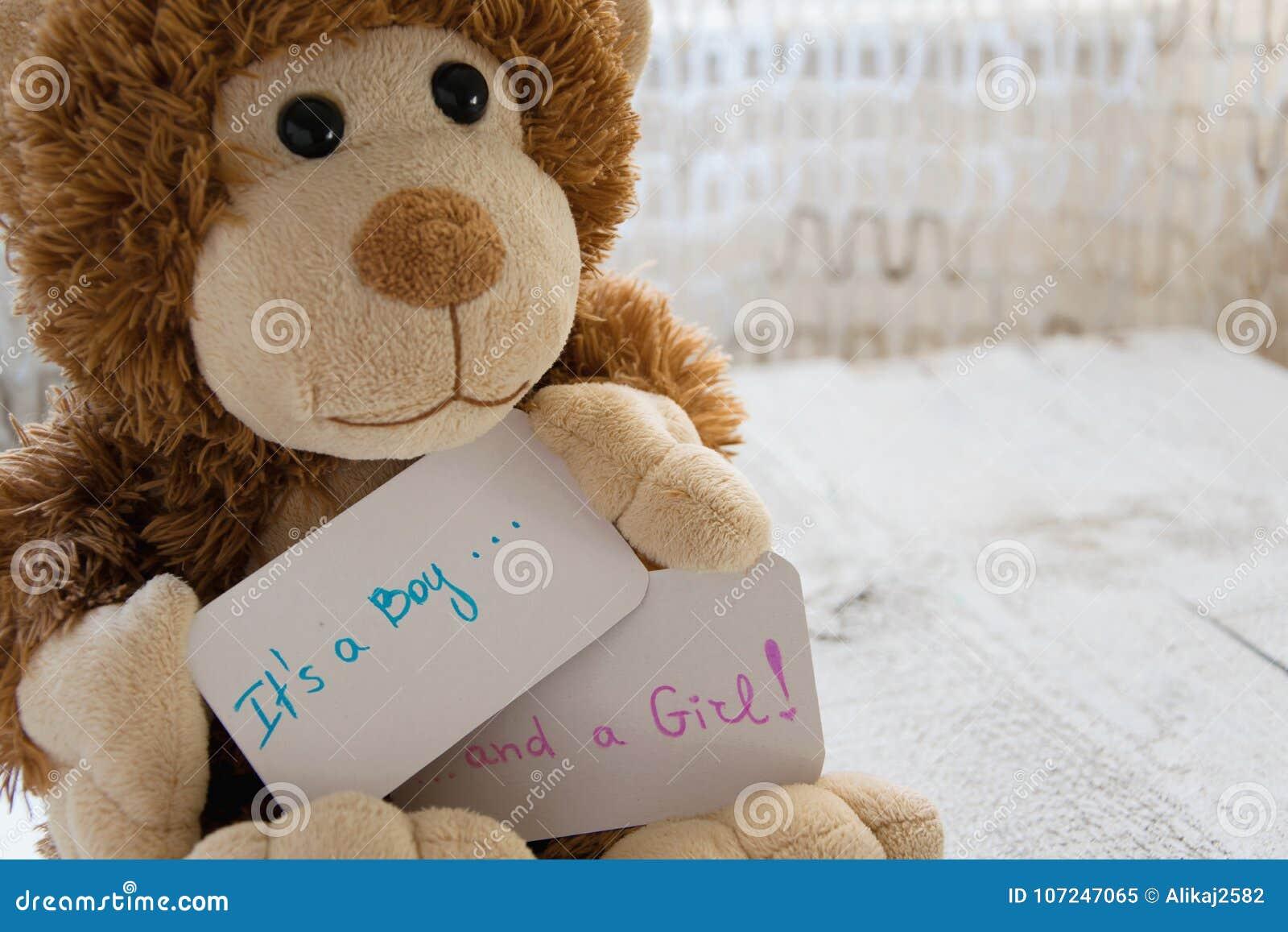` Da festa do bebê ele ` s um menino e um ` da menina O urso de peluche guarda um cartão do anúncio para chegadas dos gêmeos na f