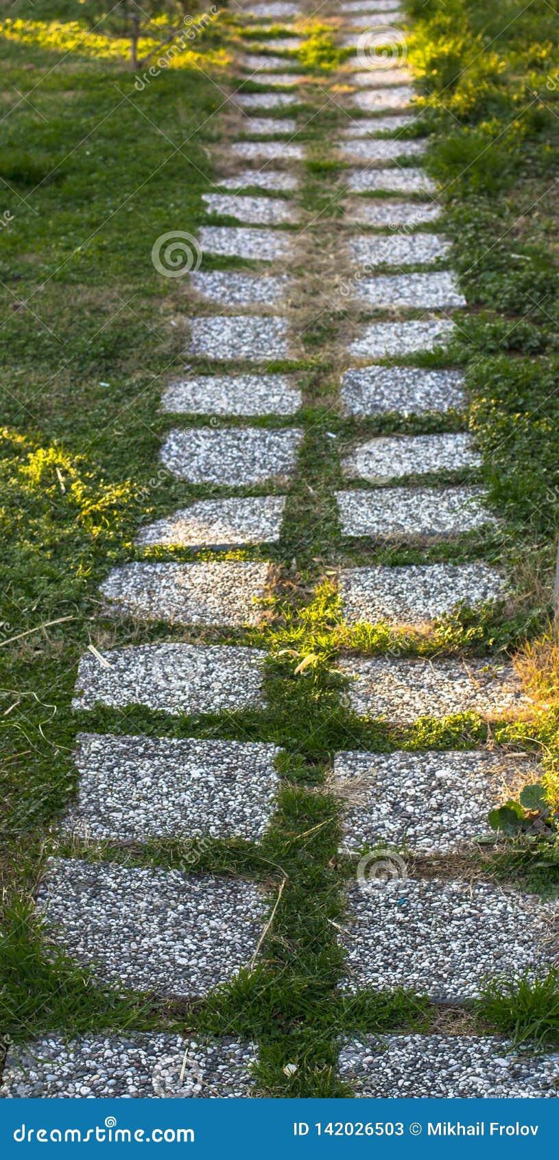 Dachówkowa ścieżka na zielonym gazonie Istanbuł park