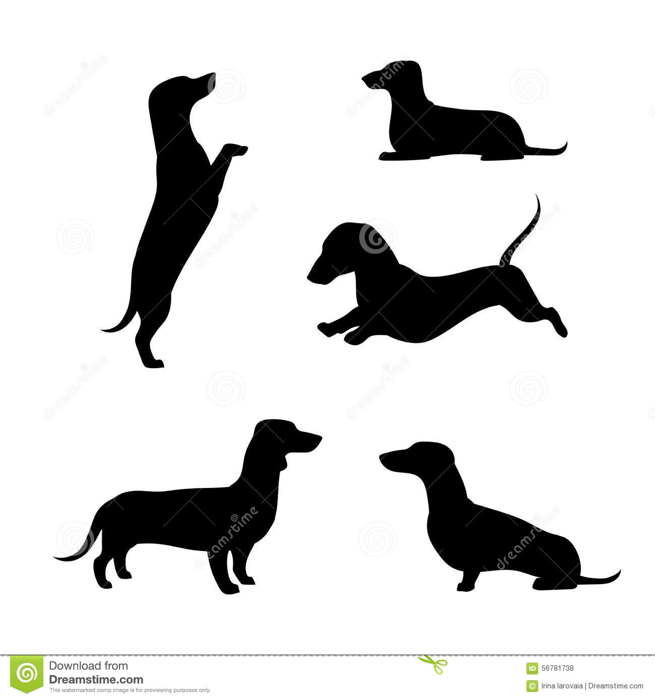 Dachshund Vector Silhouettes Illustration Outline