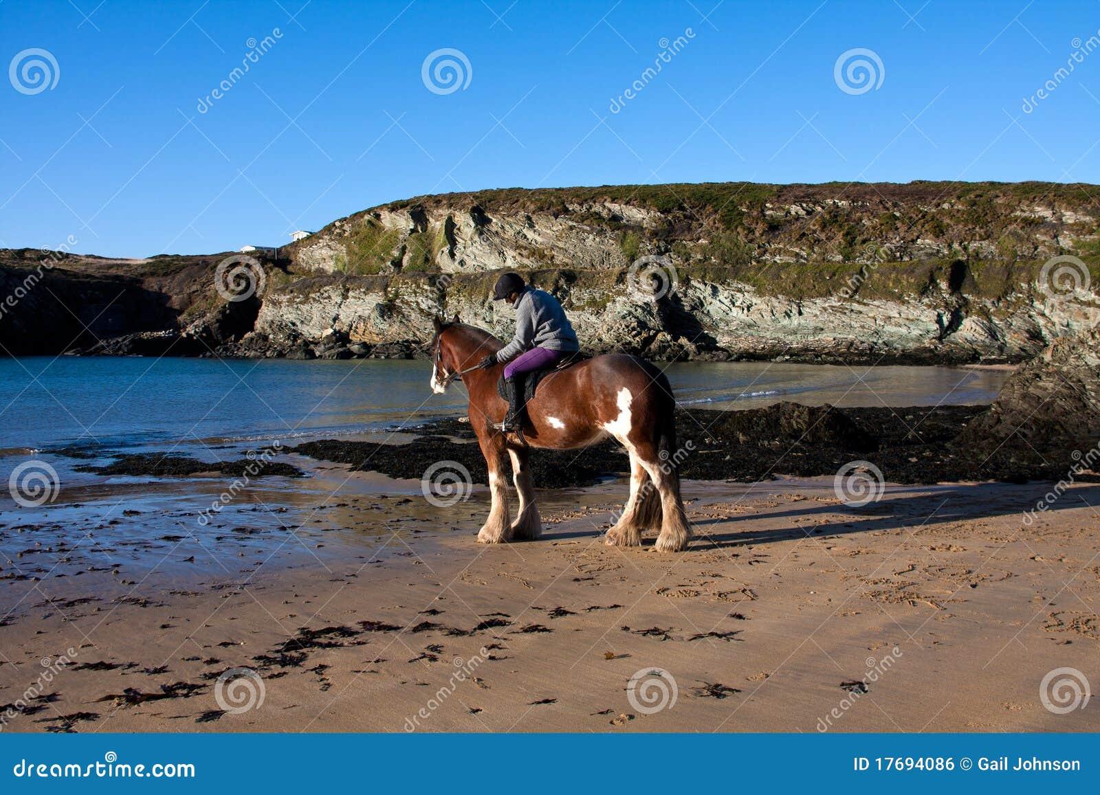 Daffarch plażowy porth