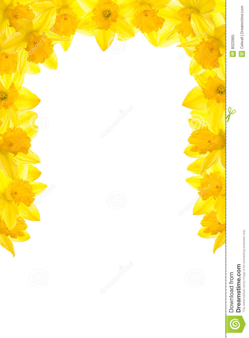 daffodil border stock image image of frame surround 8023965. Black Bedroom Furniture Sets. Home Design Ideas