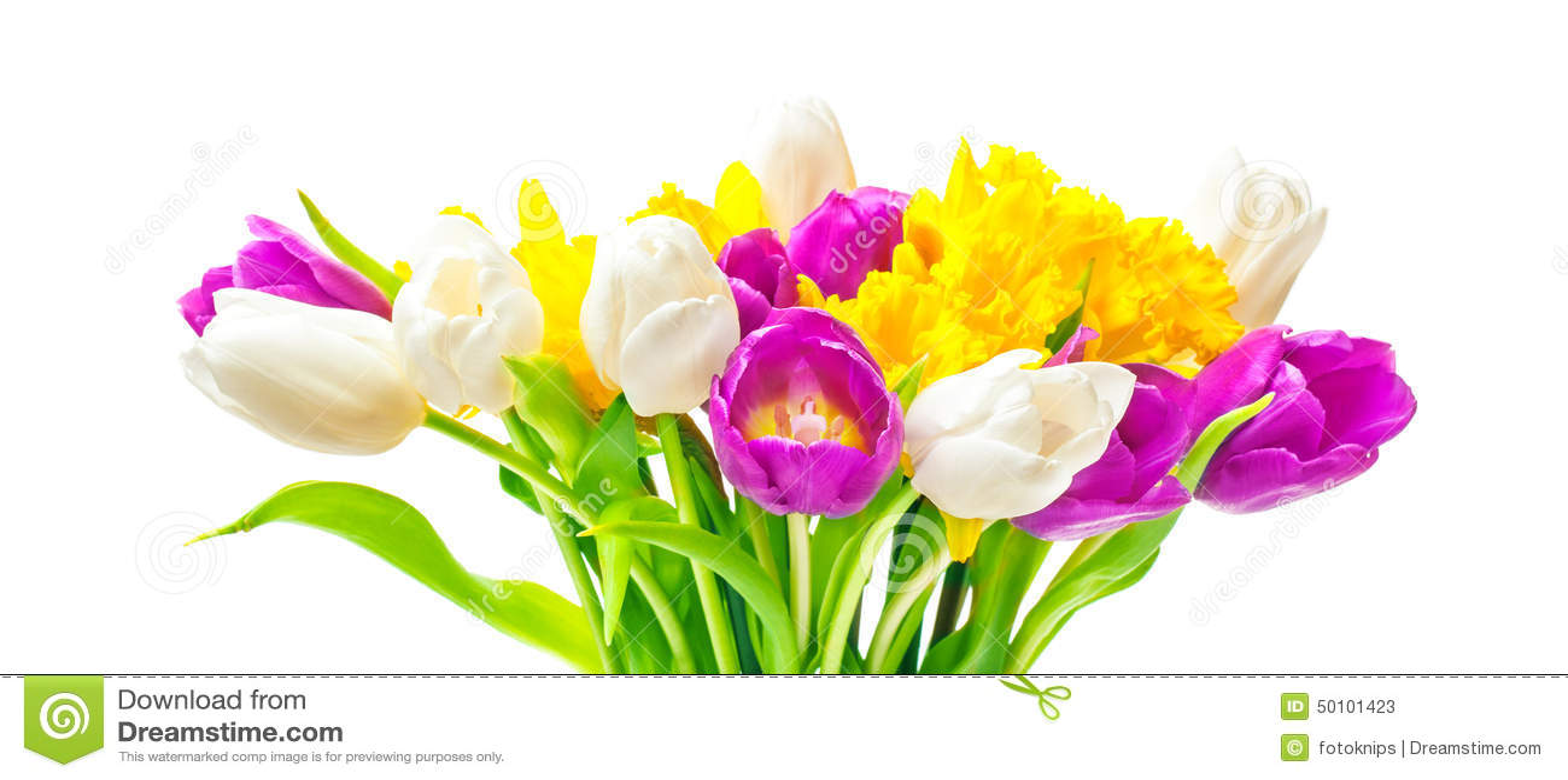 Daffodils, τουλίπες, ανθοδέσμη Πάσχας
