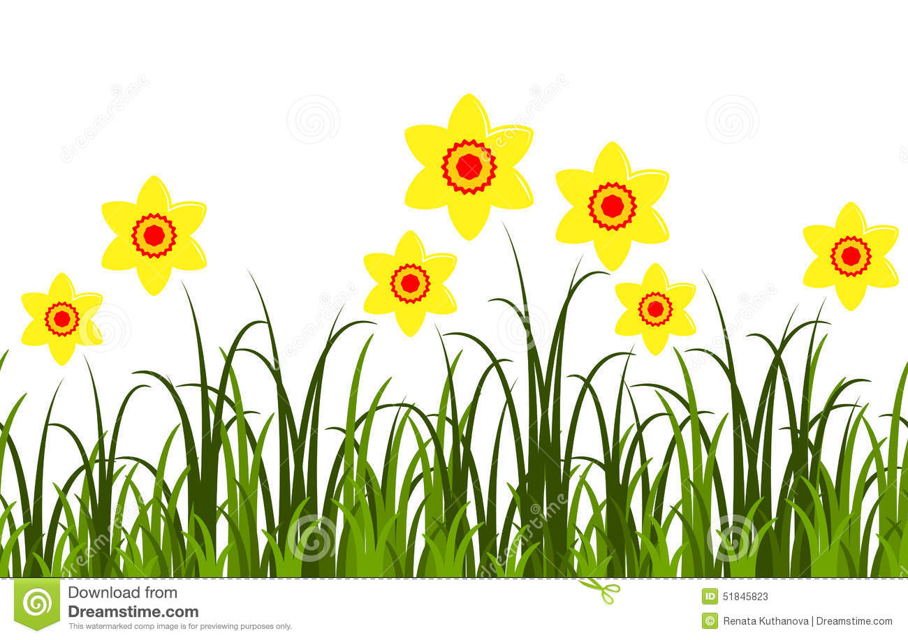 Daffodils Border Stock Illustration - Image: 51845823